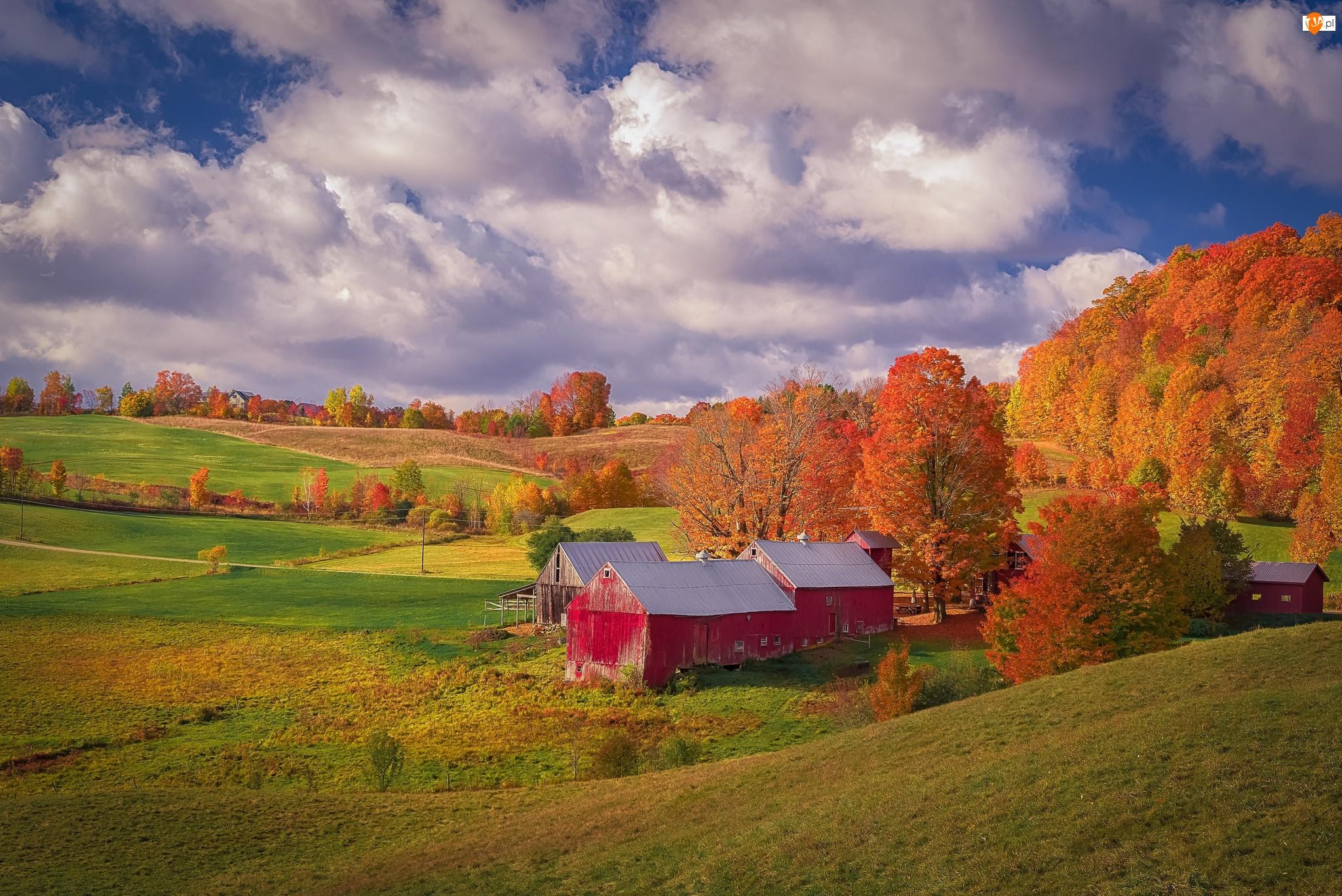 Stodoły, Wieś Reading, Drewniane, Stany Zjednoczone, Domy, Stan Vermont, Jesień, Czerwone, Farma Jenne Farm, Wzgórza, Drzewa, Chmury
