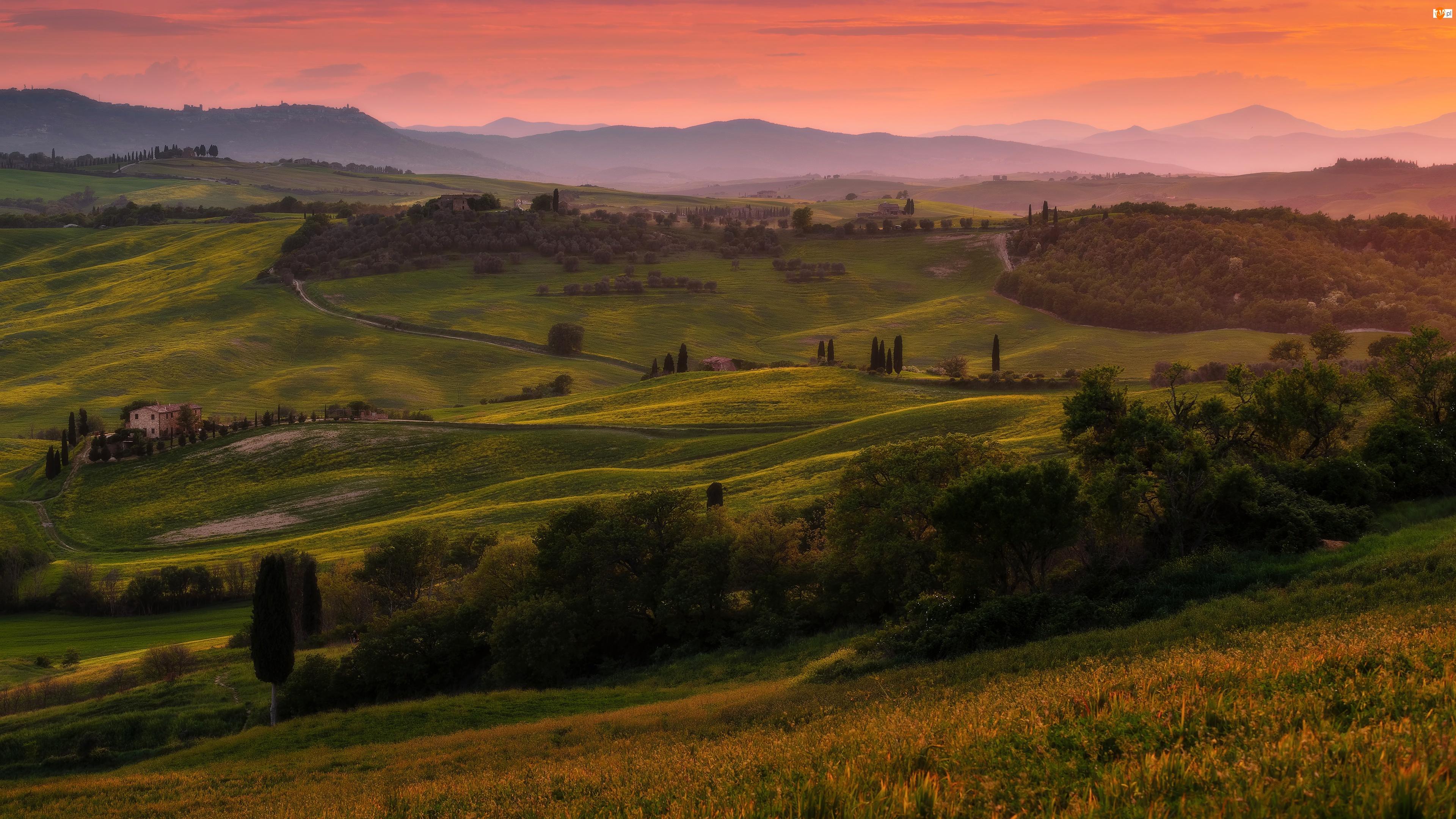 Toskania, Pola, Mgła, Włochy, Zachód słońca, Cyprysy, Drzewa