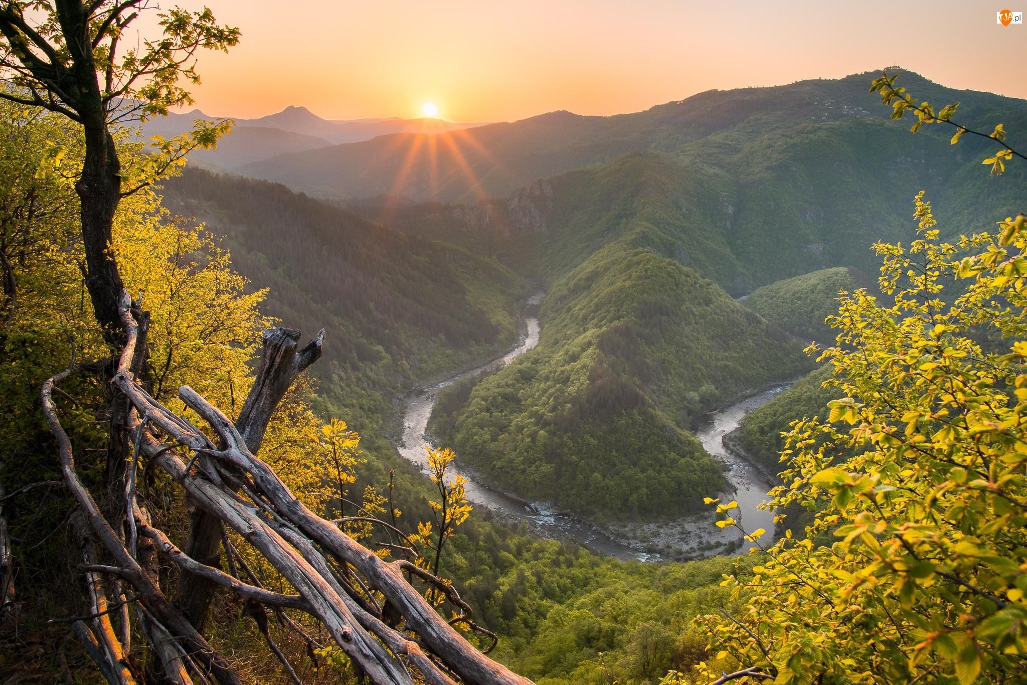 Rzeka Arda, Góry Rodopy, Drzewa, Bułgaria, Zakole, Promienie słońca