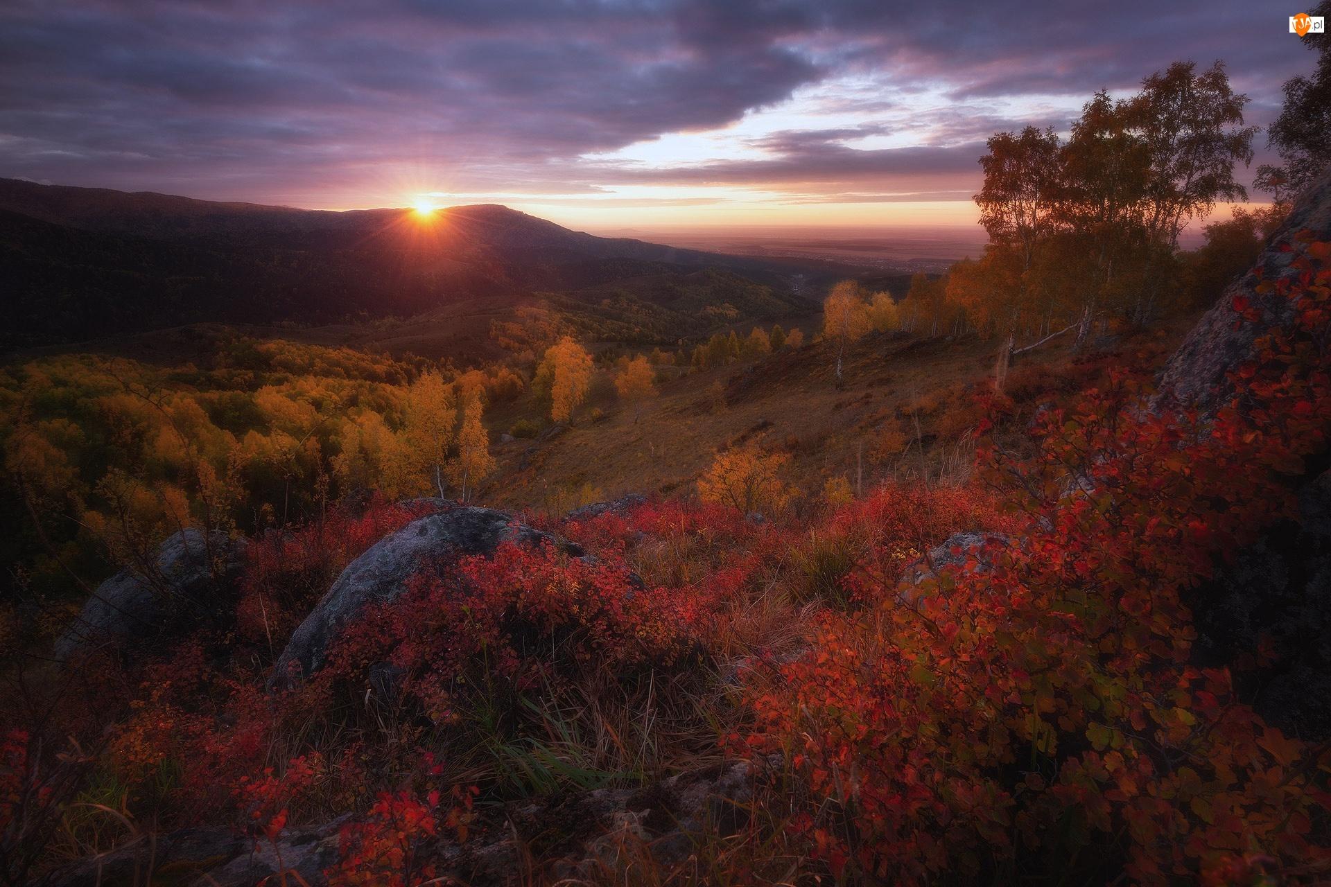 Skały, Góry Ałtaj, Drzewa, Republika Ałtaju, Zachód słońca, Brzozy, Rosja, Jesień