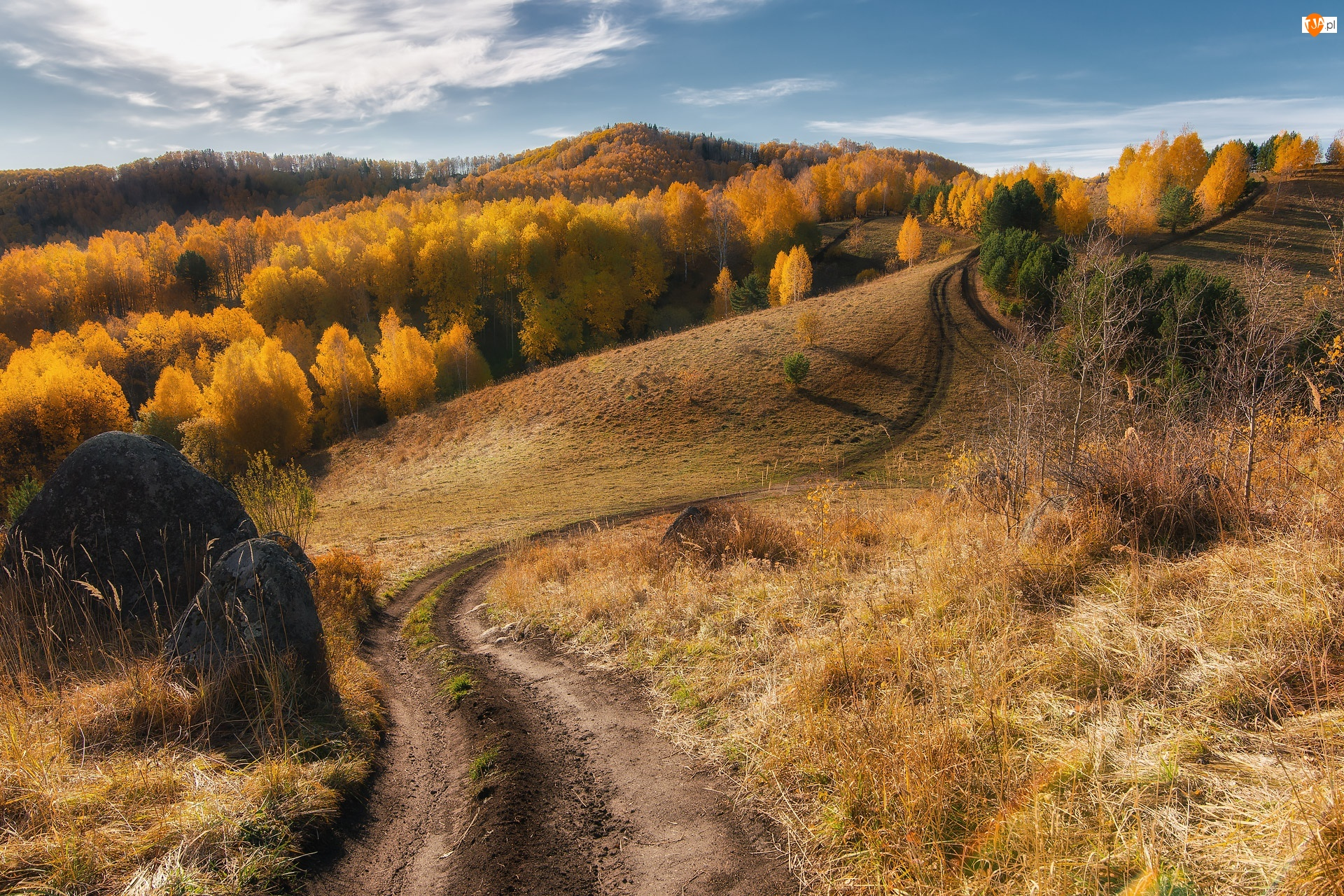 Drzewa, Droga, Jesień, Rosja, Wzgórza, Kraj Ałtajski