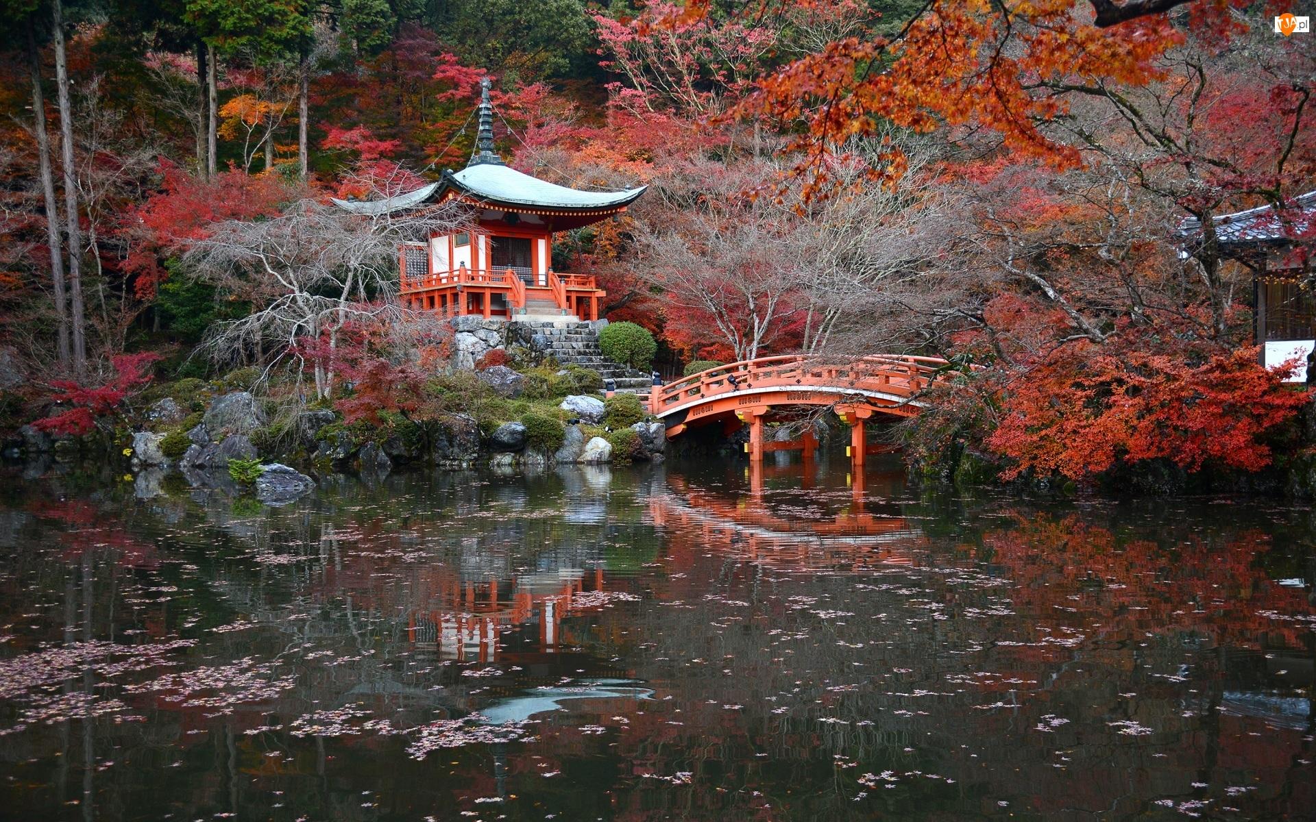 Drzewa, Kompleks świątynny Daigo-ji, Staw, Kioto, Świątynia Benten-do, Jesień, Japonia, Mostek