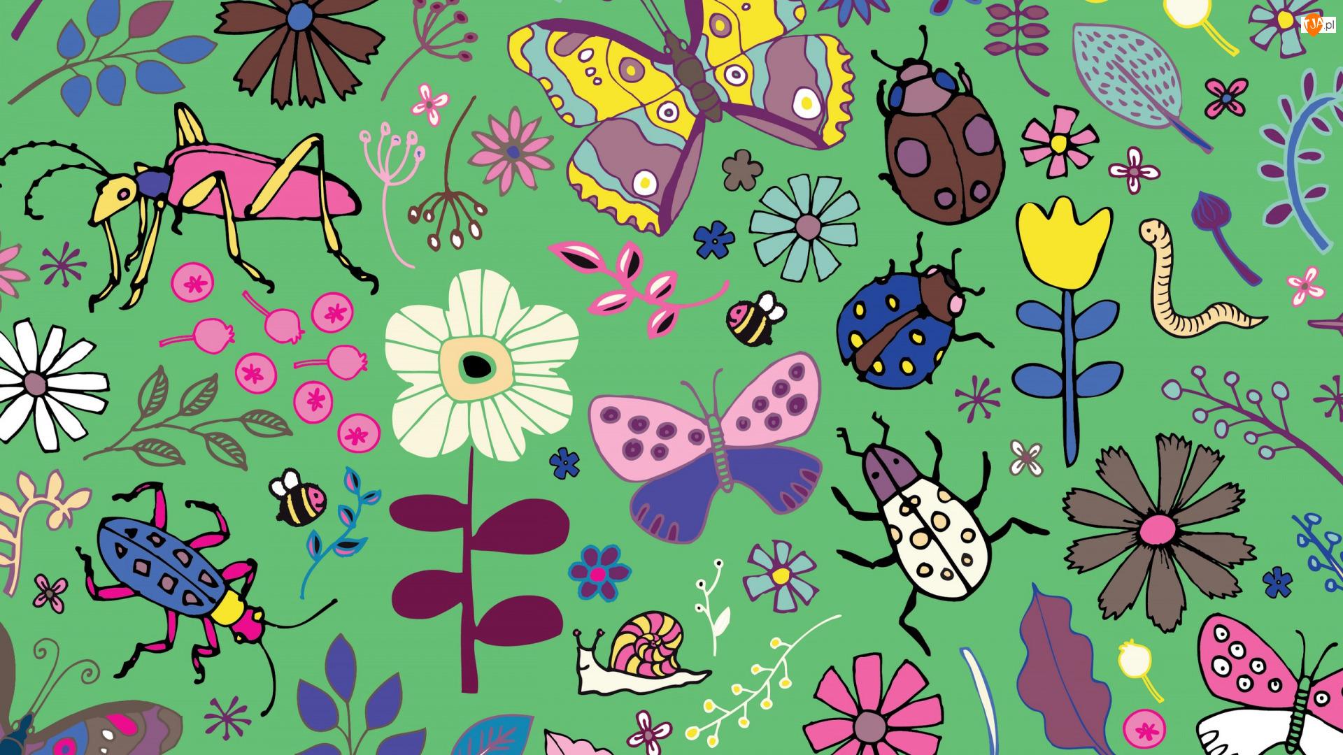 Tekstura, Motyle, Chrząszcze, Kwiaty