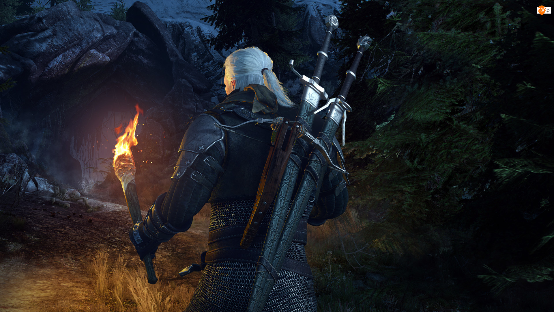 The Witcher 3 Wild Hunt, Wiedźmin 3 Dziki Gon