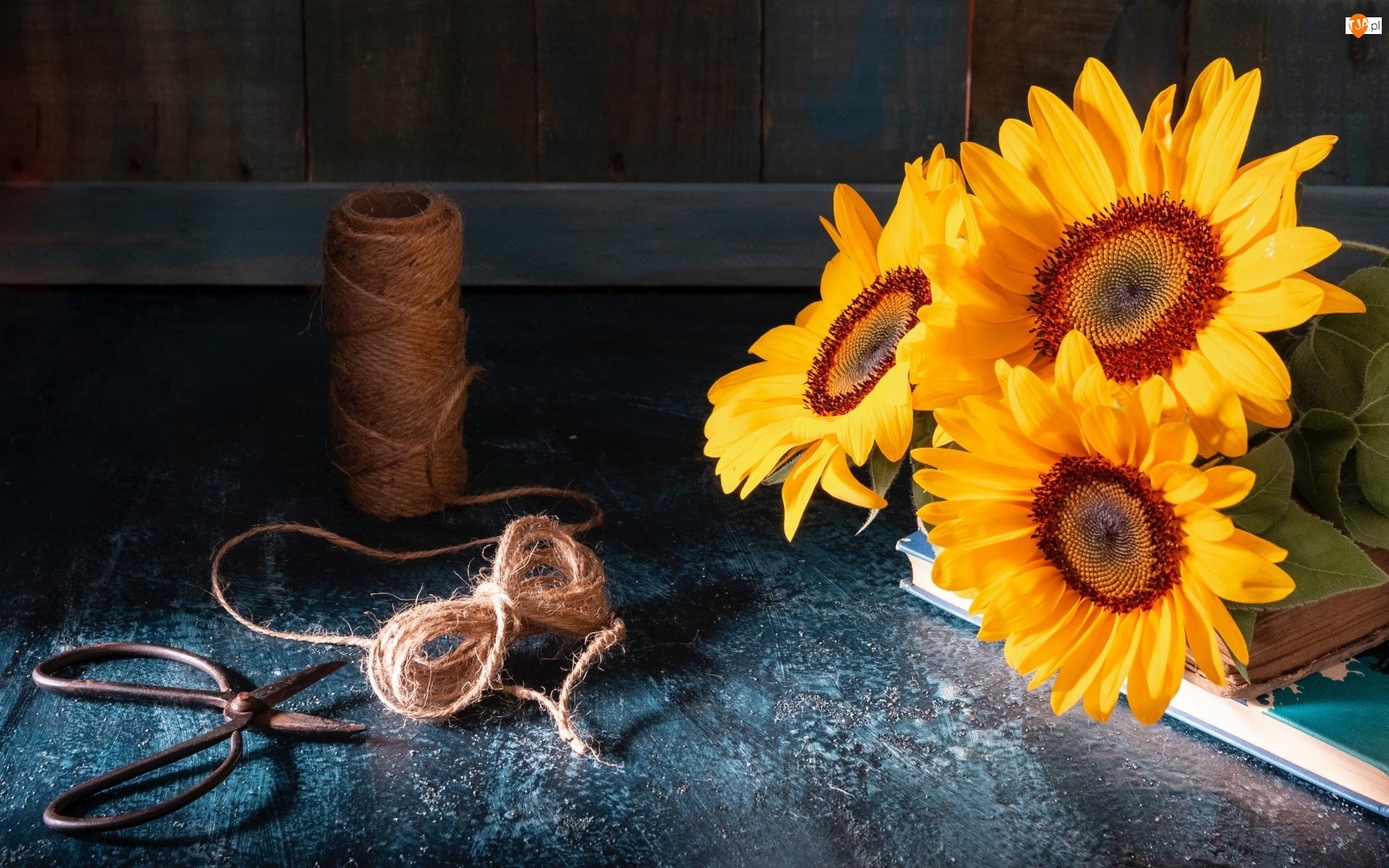 Słoneczniki ozdobne, Książki, Deski, Kwiaty, Kokardka, Nożyczki, Sznurek