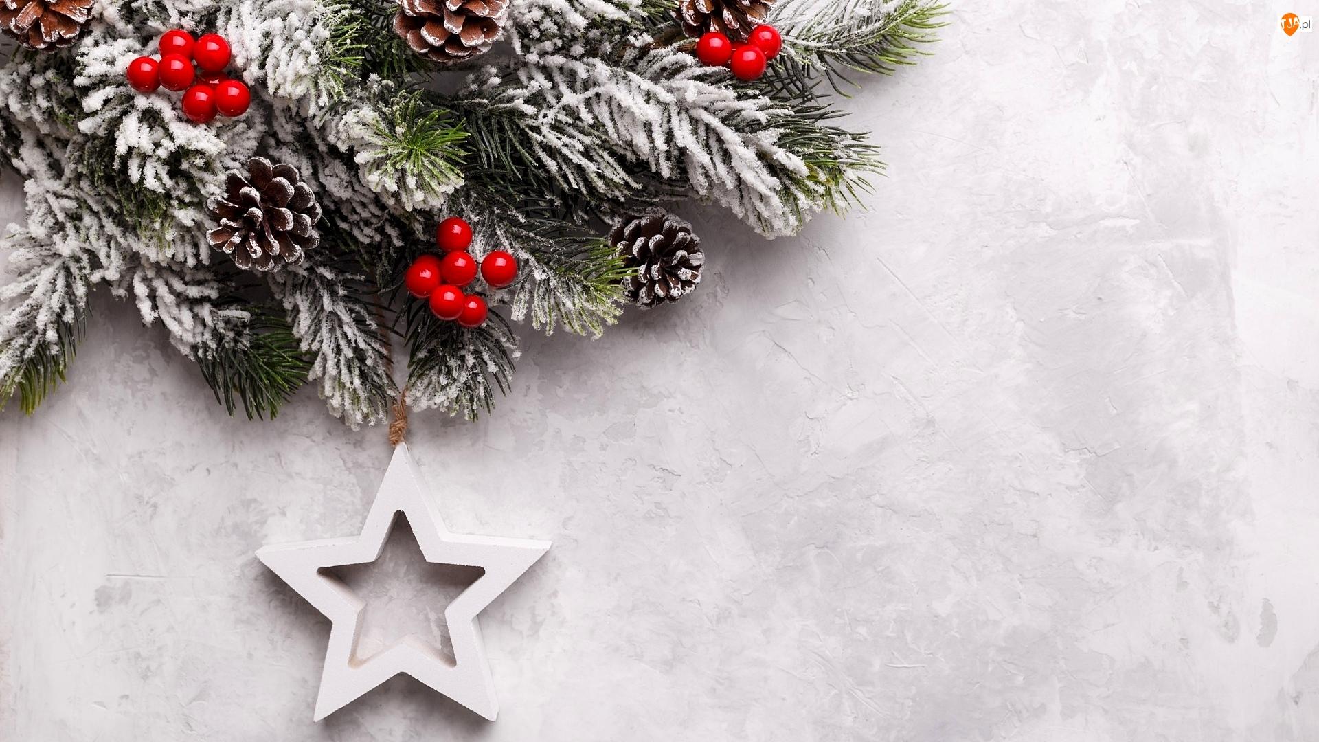 Świąteczne, Gałązki, Zawieszka, Ozdoby, Szyszki, Gwiazda, Boże Narodzenie, Jagody
