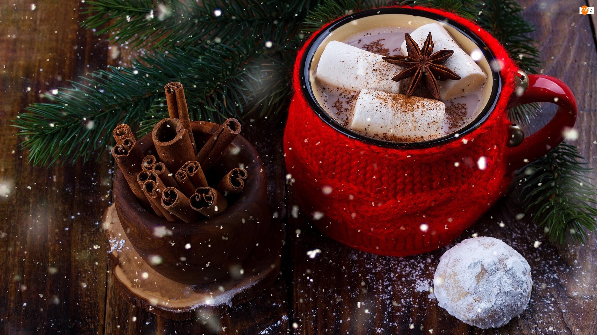 Kakao, Pianki, Świąteczna, Kubek, Kompozycja, Iglaczek, Cynamon