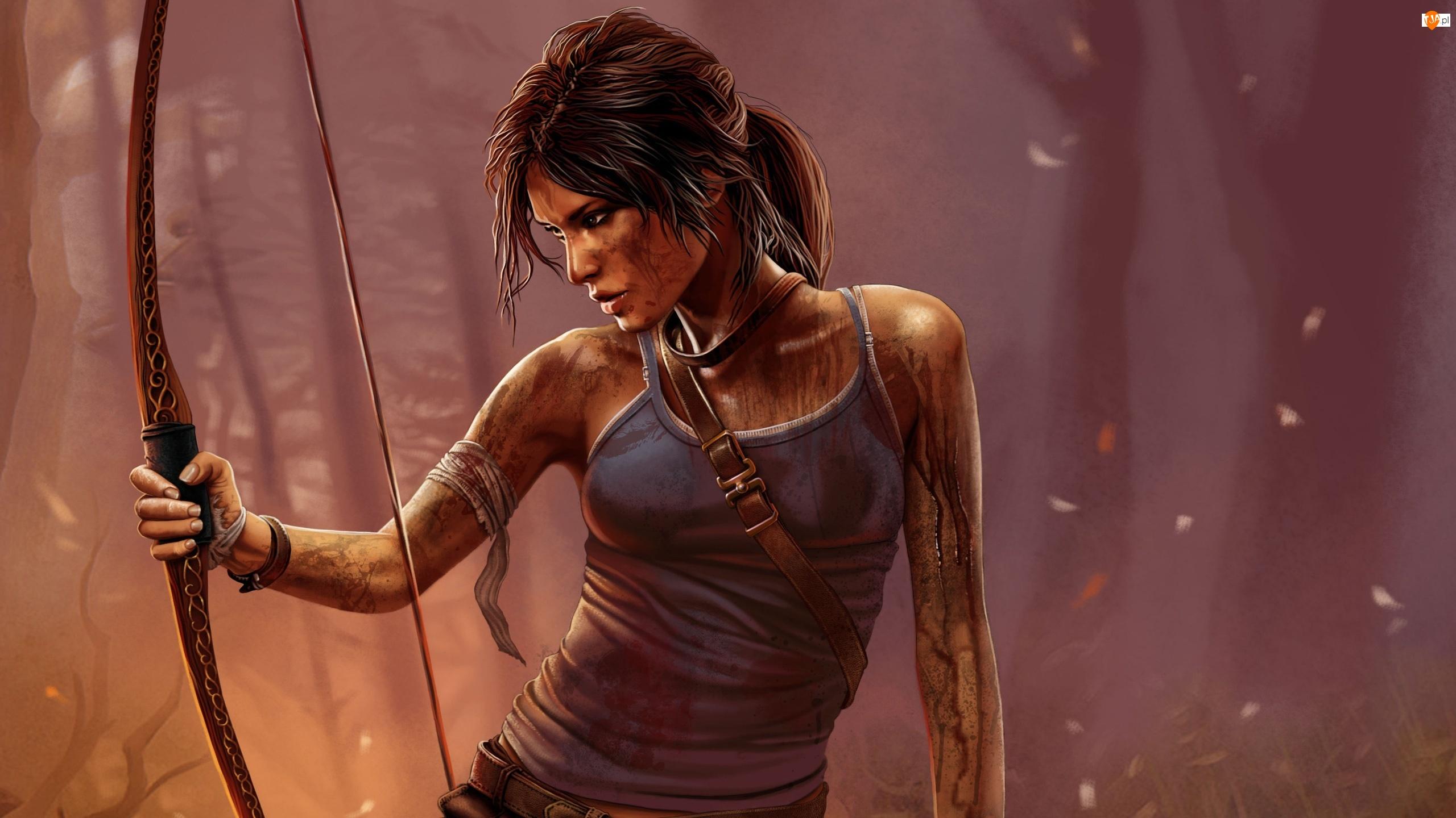 Łuk, Lara, Raider, Kobieta, Tomb, Gra, Croft