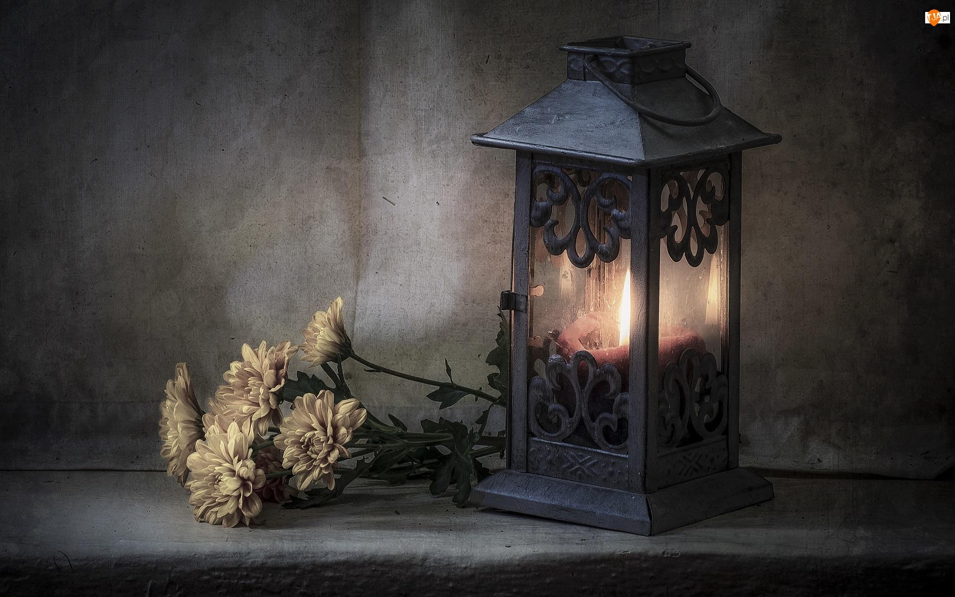 Płomień, Chryzantemy, Świeca, Lampion, Kwiaty