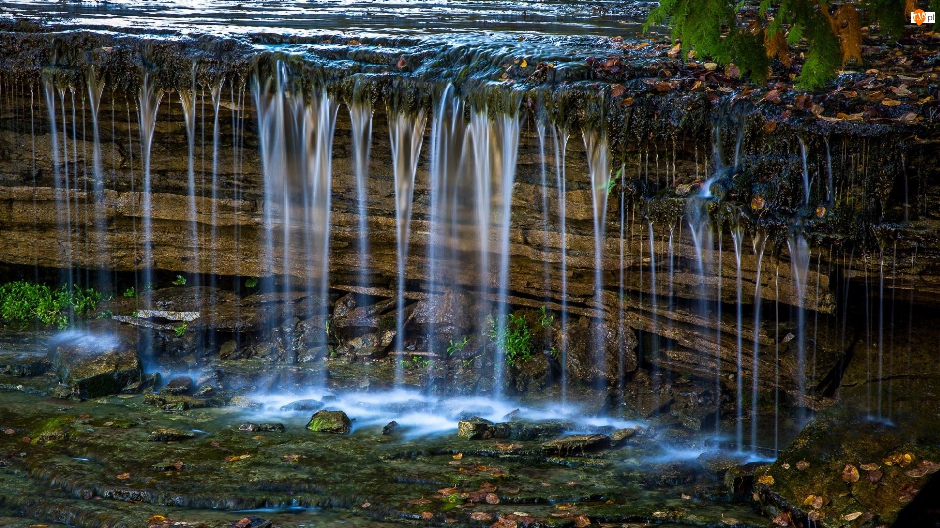 Roślinność, Wodospad, Skała