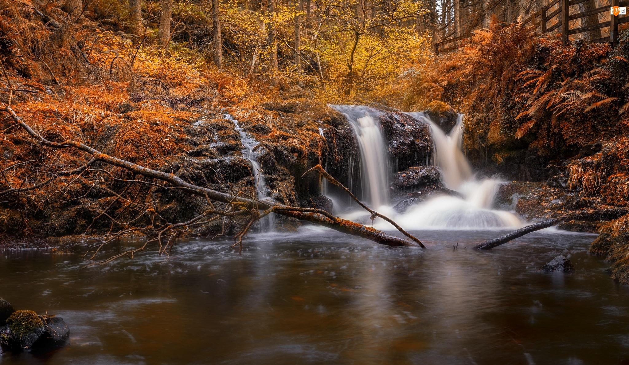 Drzewa, Skały, Jesień, Las, Most, Rzeka, Wodospad