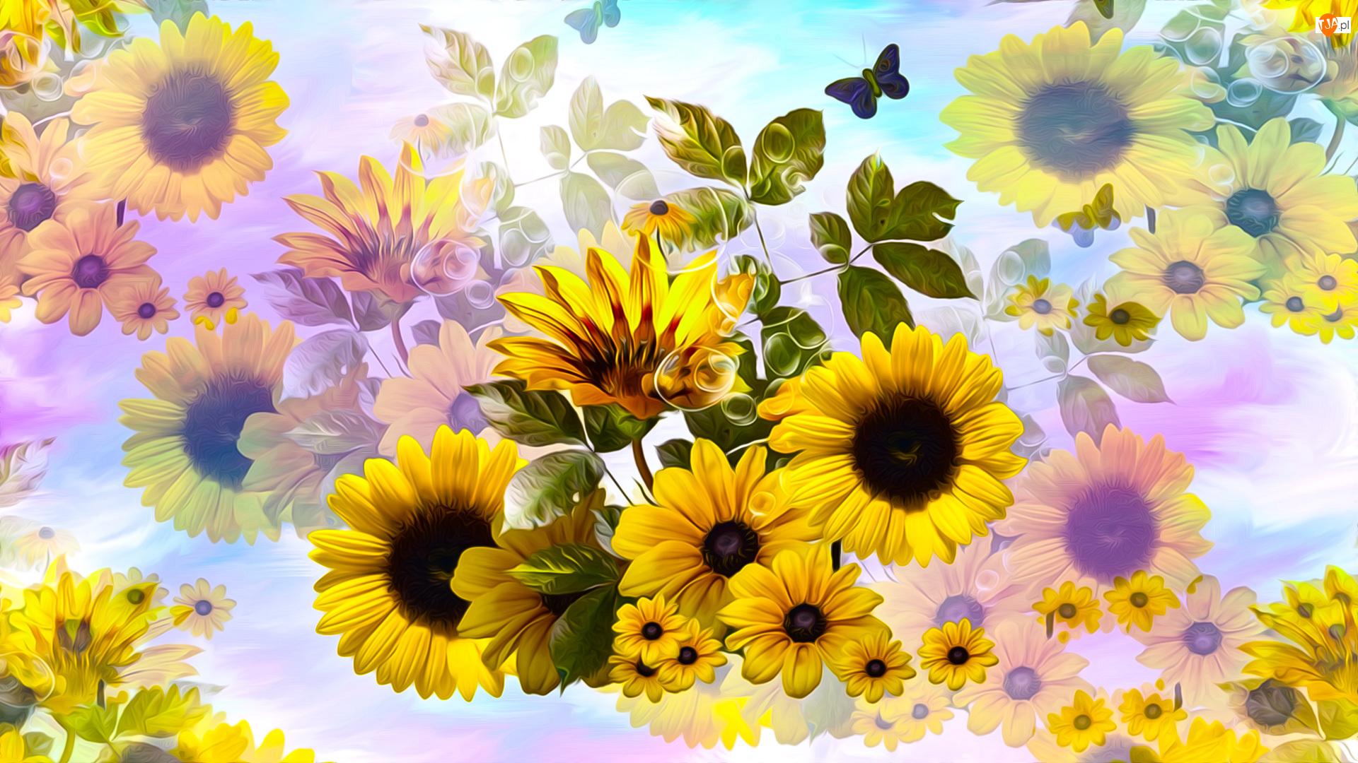 Słoneczniki, Grafika, Kwiaty, Żółte, Motylek