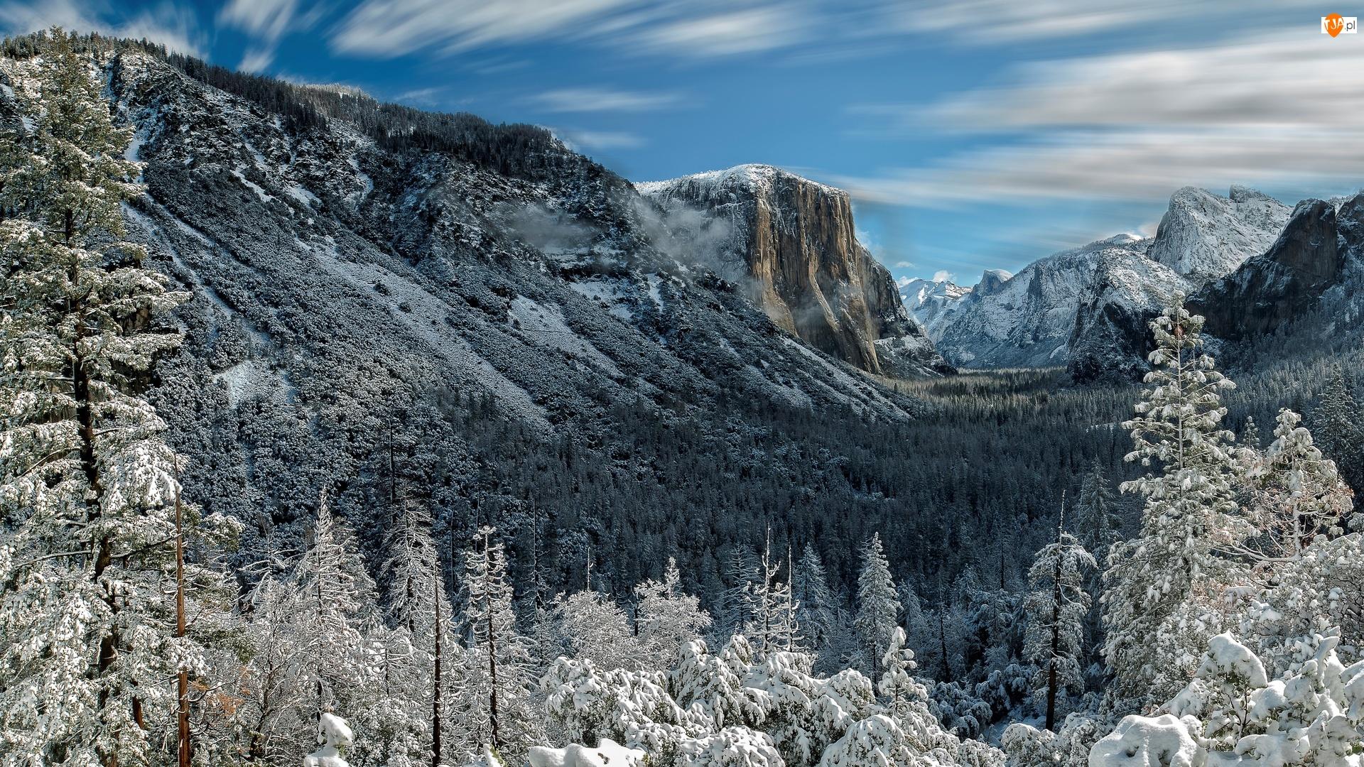 Zima, Góry, Stany Zjednoczone, Park Narodowy Yosemite, Stan Kalifornia, Drzewa, Dolina Yosemite Valley