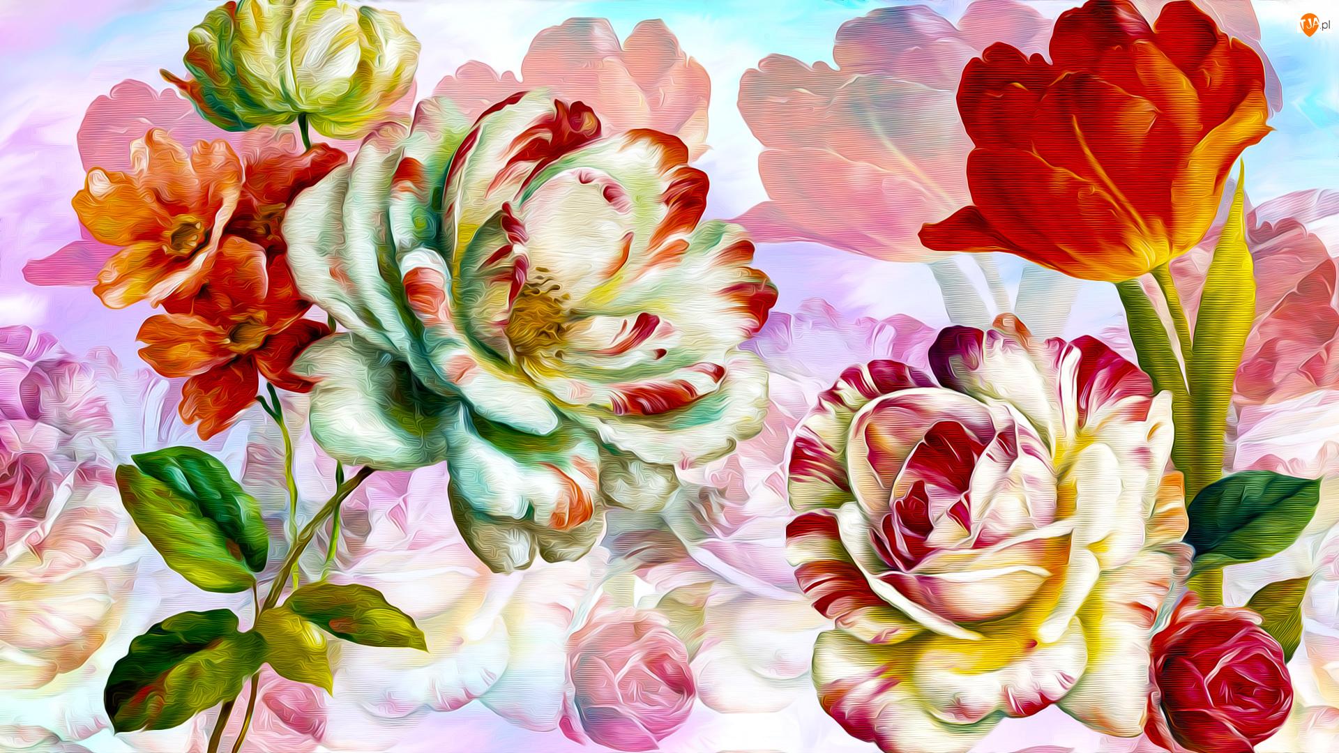 Grafika, Kwiaty, Tulipan, Róże
