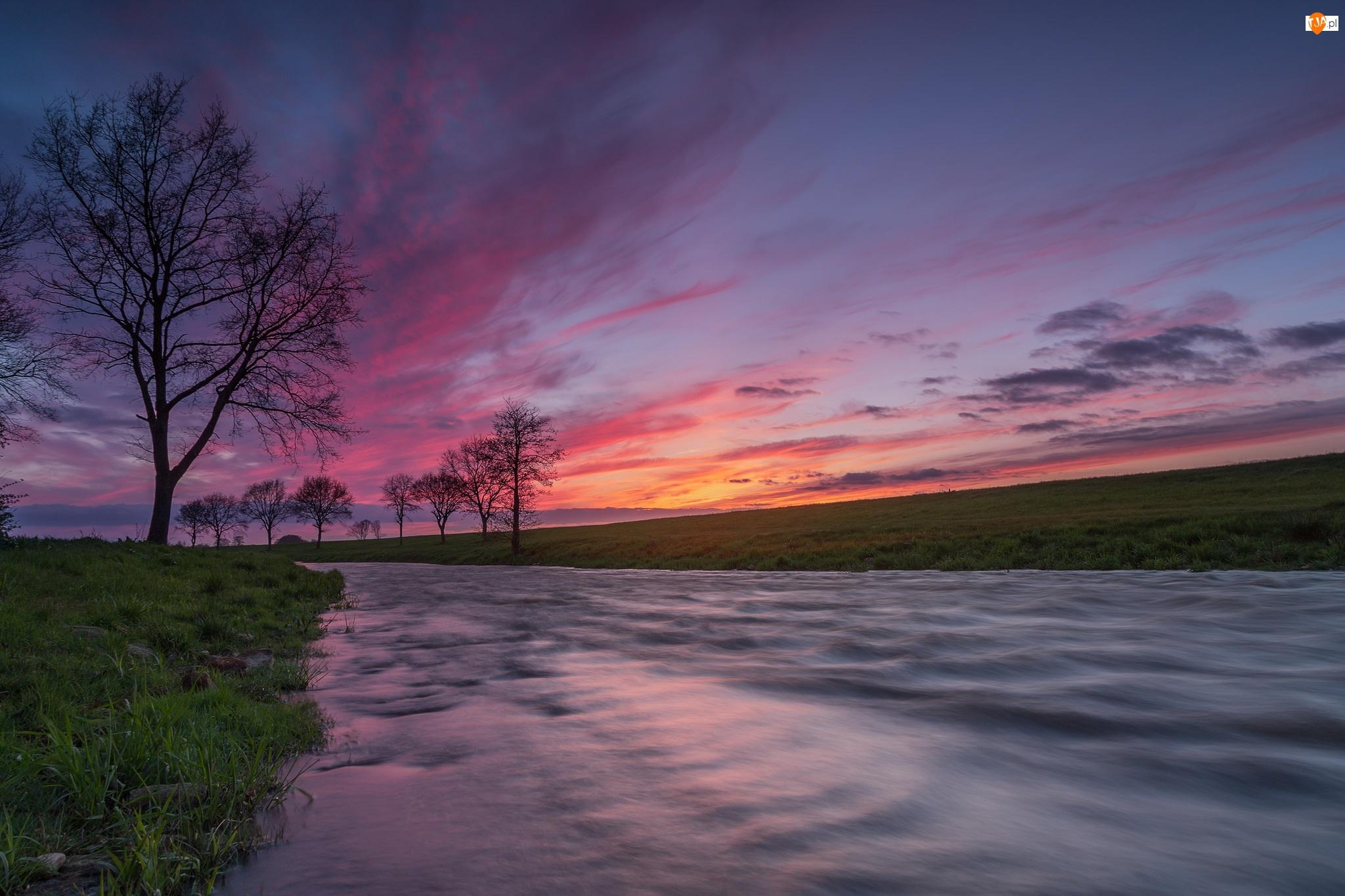 Drzewa, Rzeka, Trawa, Zachód słońca, Łąka, Chmury