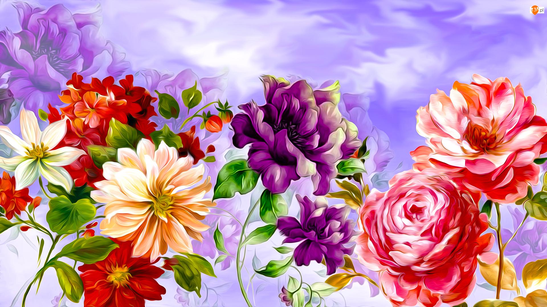 Fioletowe, Grafika, Żółte, Czerwone, Kwiaty