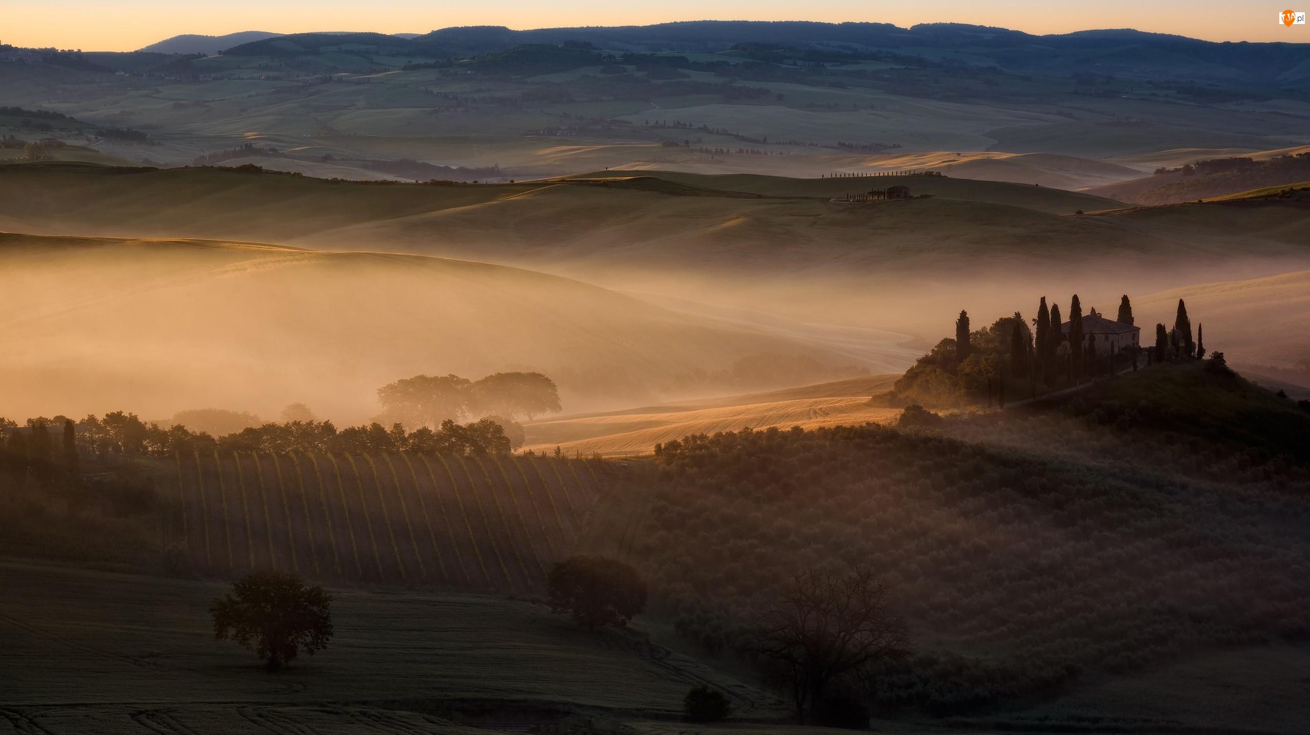 Toskania, Pola, Mgła, Włochy, Domy, Drzewa, Wzgórza