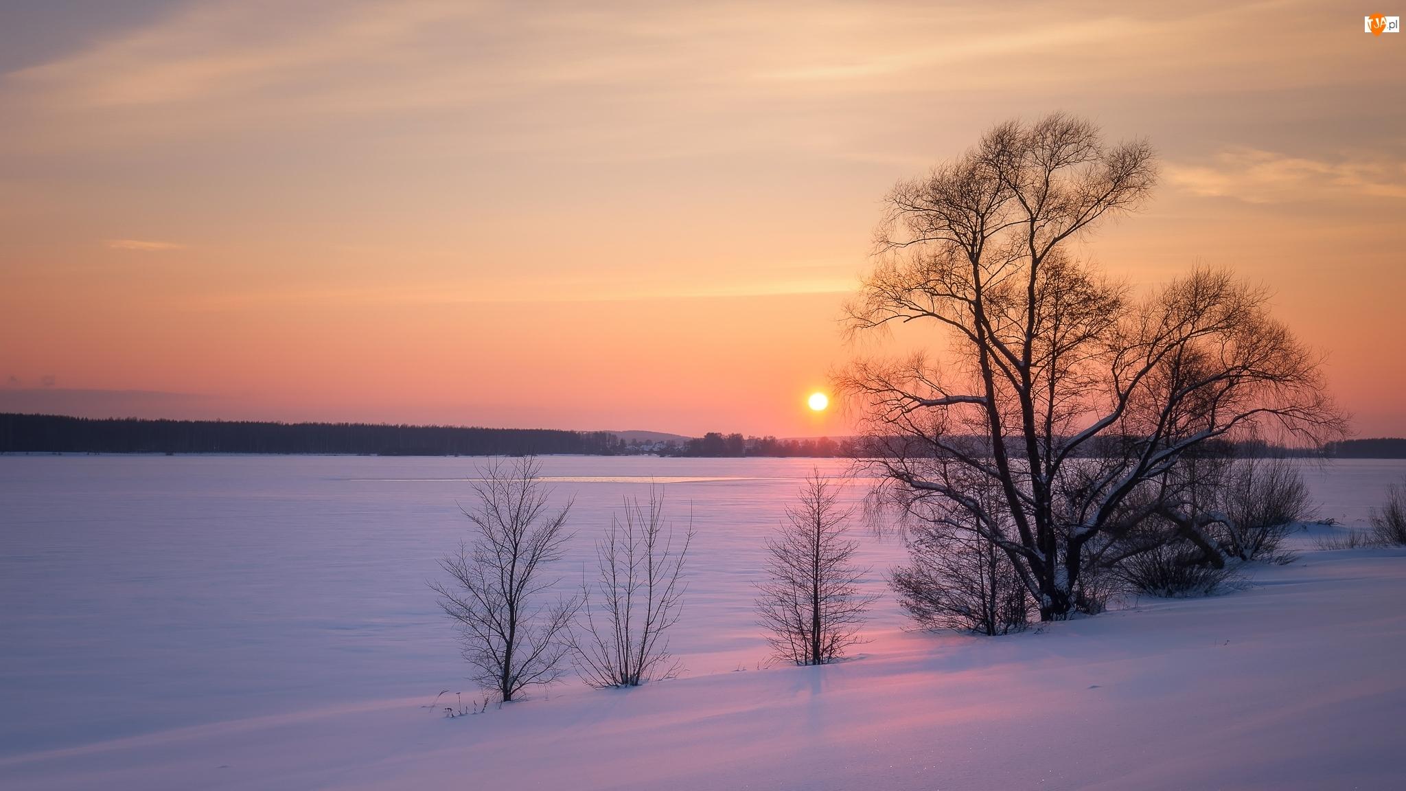Rzeka Wołga, Zima, Zachód słońca, Rosja, Drzewa, Miejscowość Kostroma