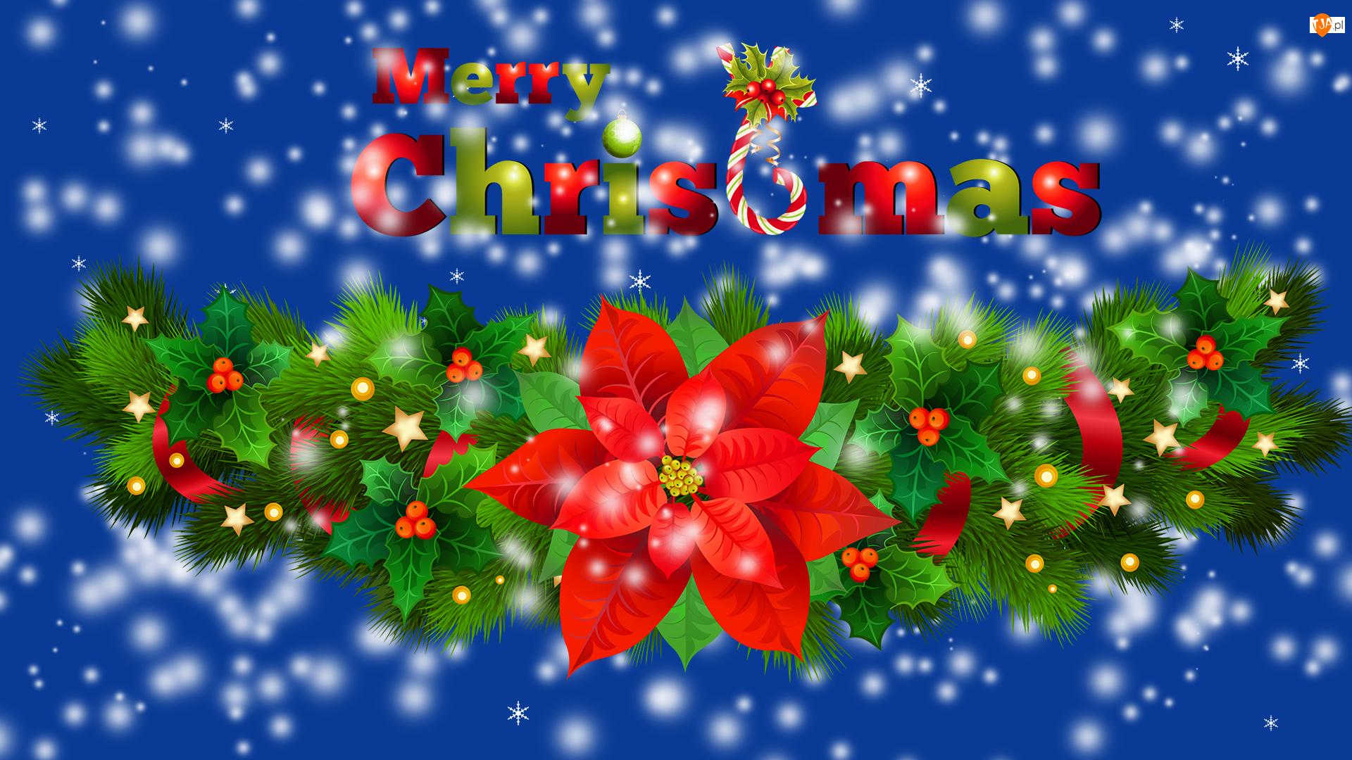 Stroik, Merry Christmas, Grafika, Boże Narodzenie, Napis