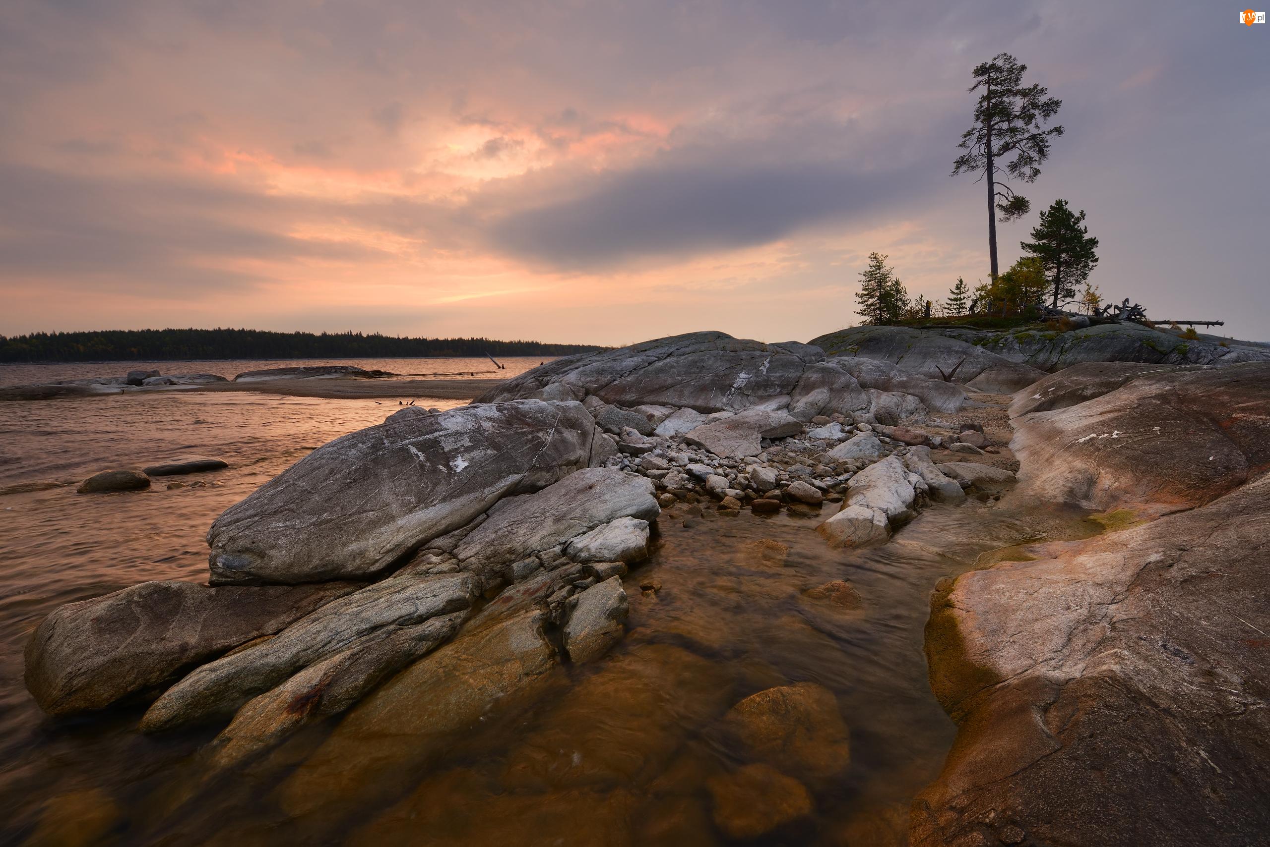 Jezioro Siegoziero, Drzewa, Karelia, Rosja, Skały
