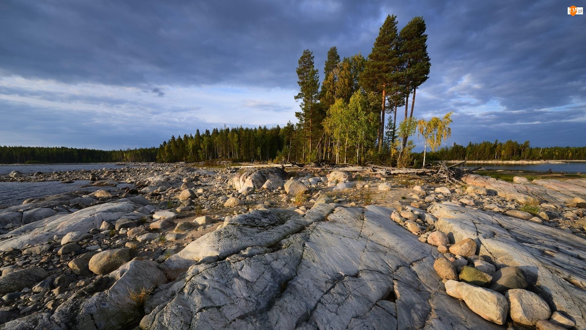 Skały, Jezioro Siegoziero, Drzewa, Rosja, Kamienie, Karelia