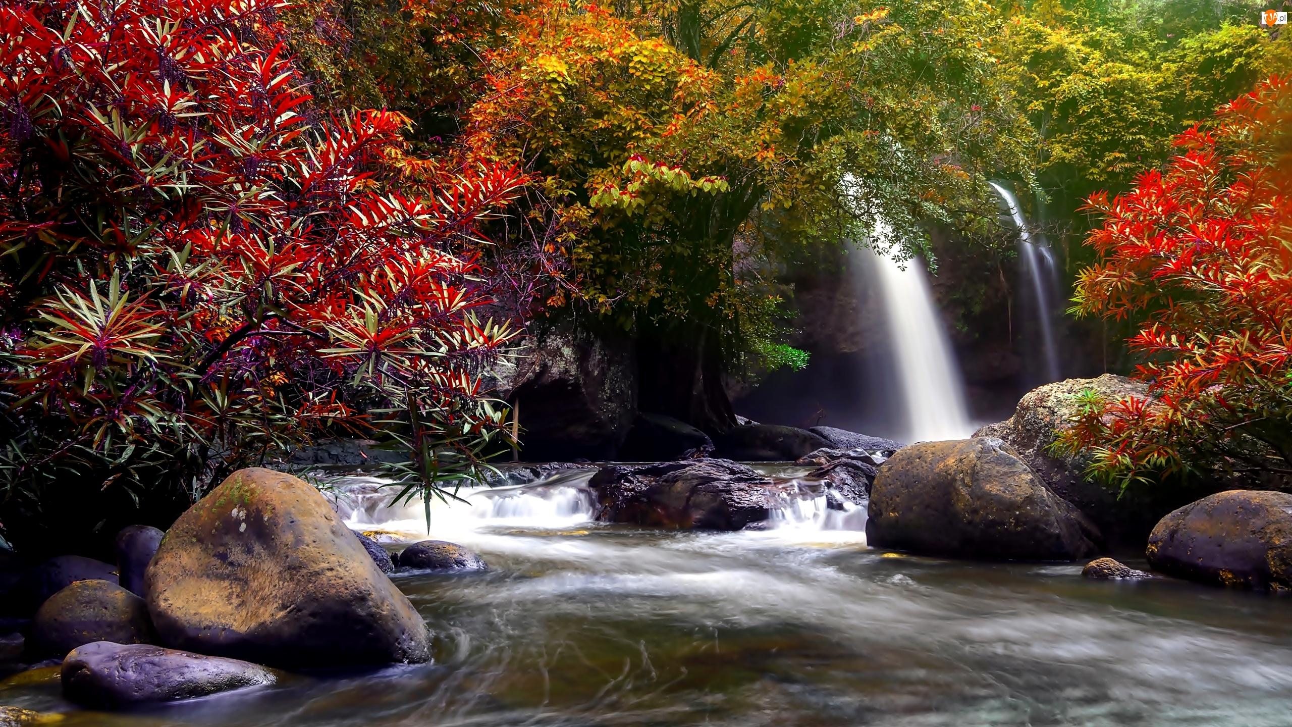 Park Narodowy Khau Yai, Tajlandia, Rzeka, Drzewa, Wodospad Haew Suwat, Skały