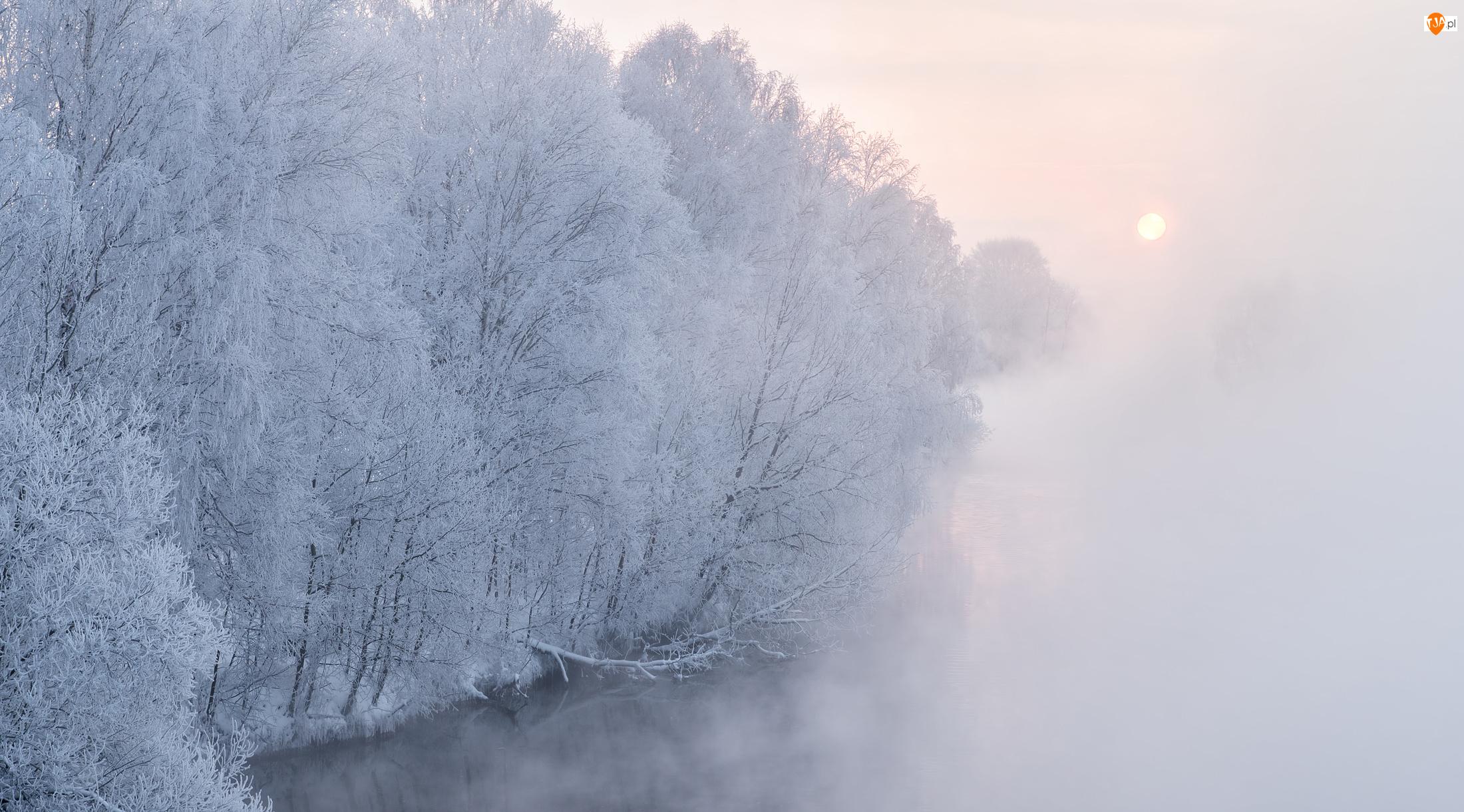 Rzeka, Zima, Szron, Mgła, Drzewa, Wschód słońca