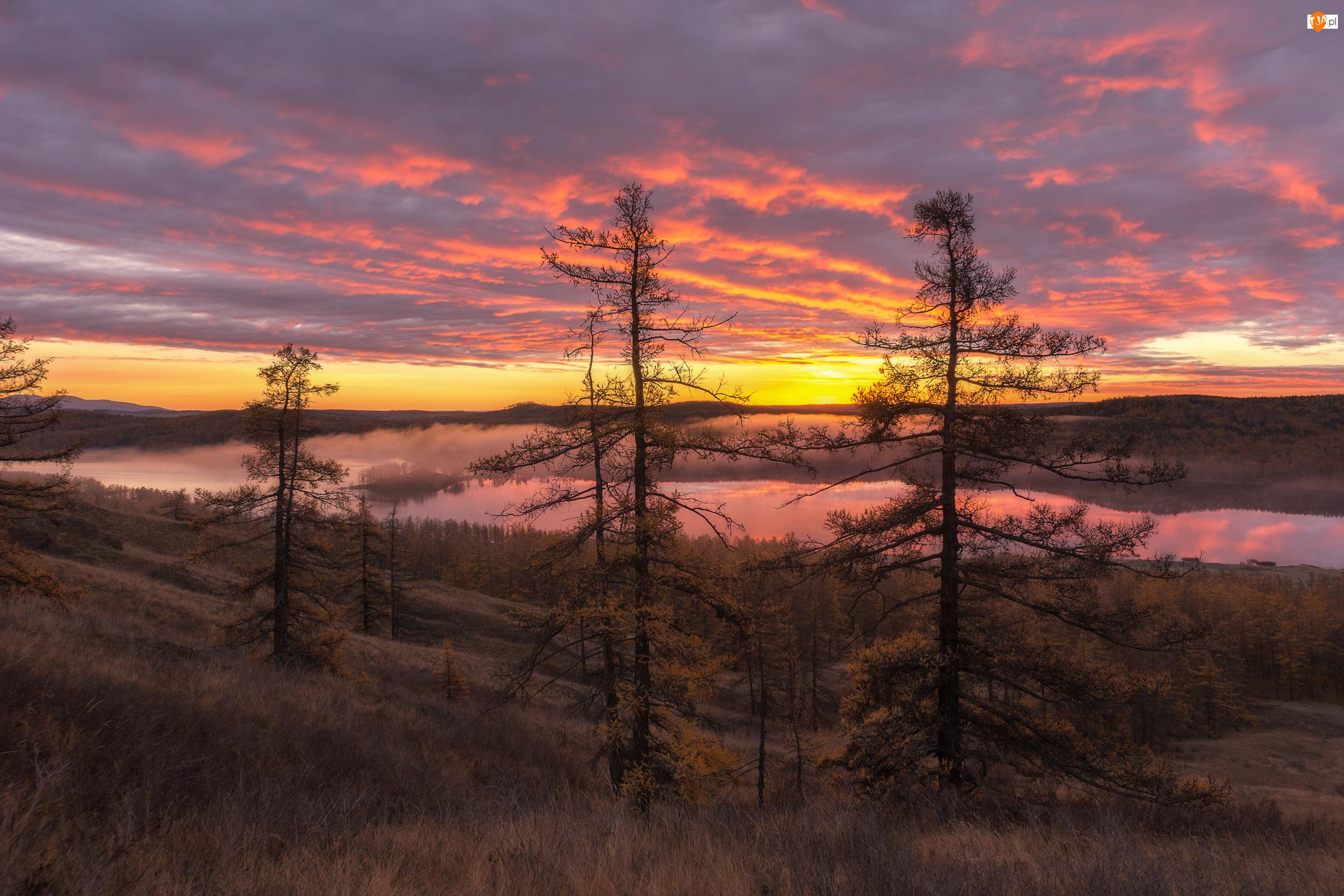 Drzewa, Wzgórza, Mgła, Chmury, Jezioro, Zachód słońca