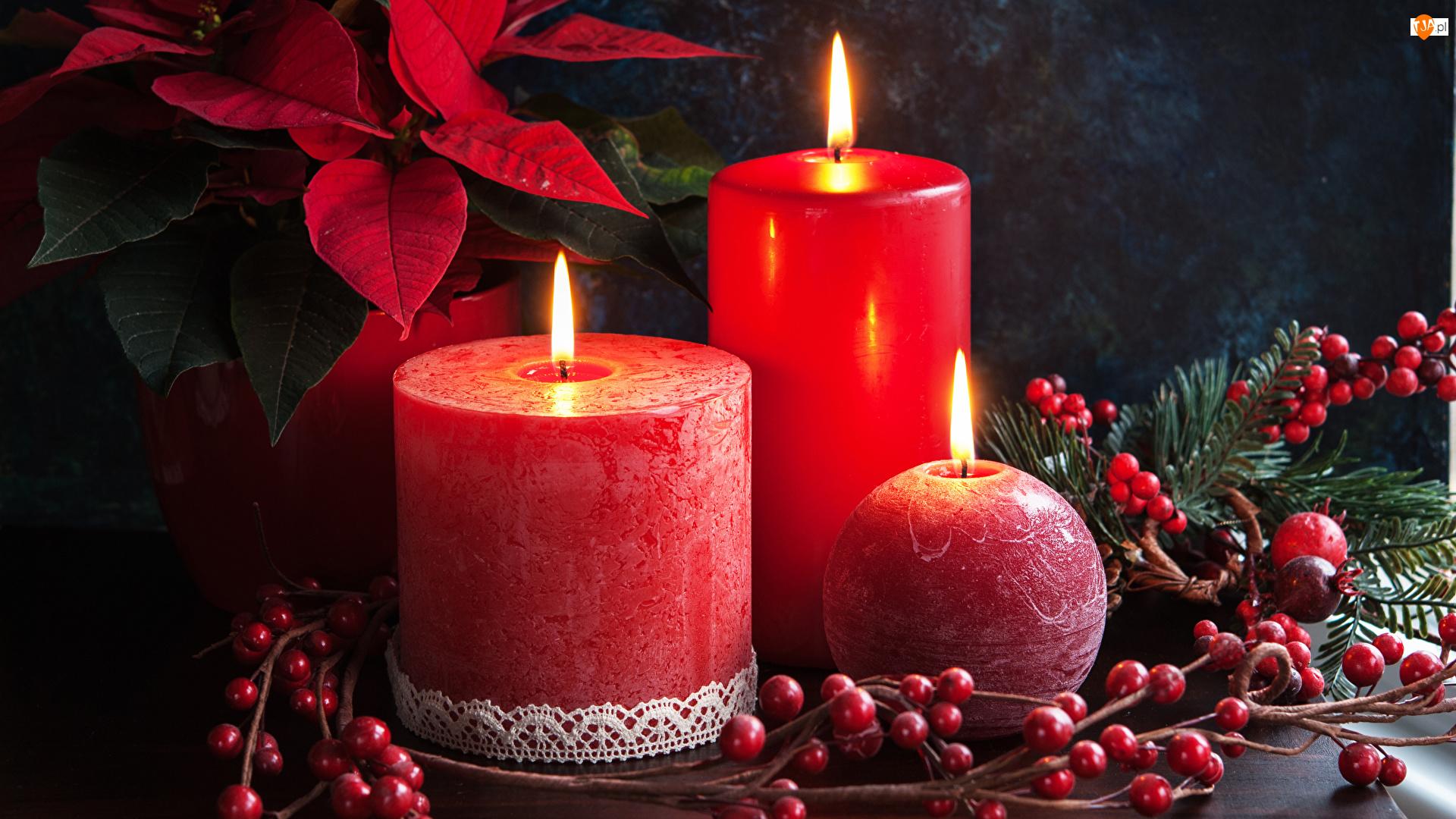 Świece, Kompozycja, Czerwone, Trzy, Świąteczna
