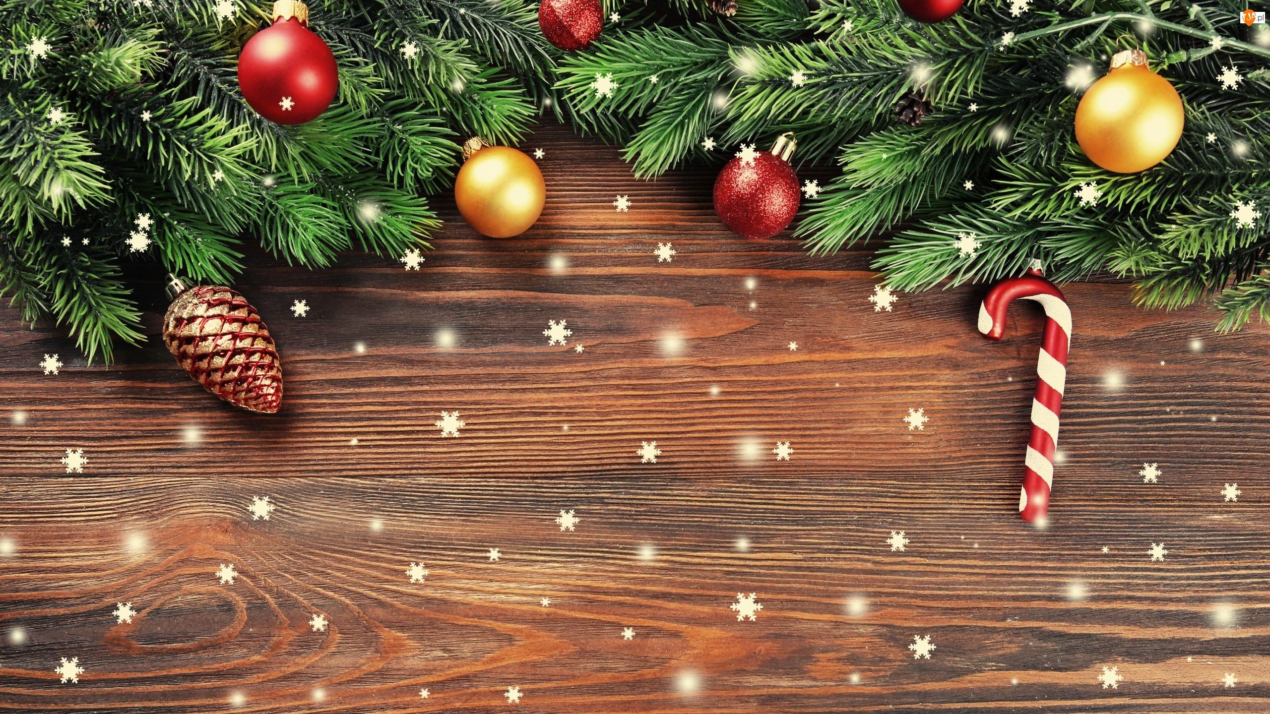 Szyszka, Boże Narodzenie, Gałązki, Bombki