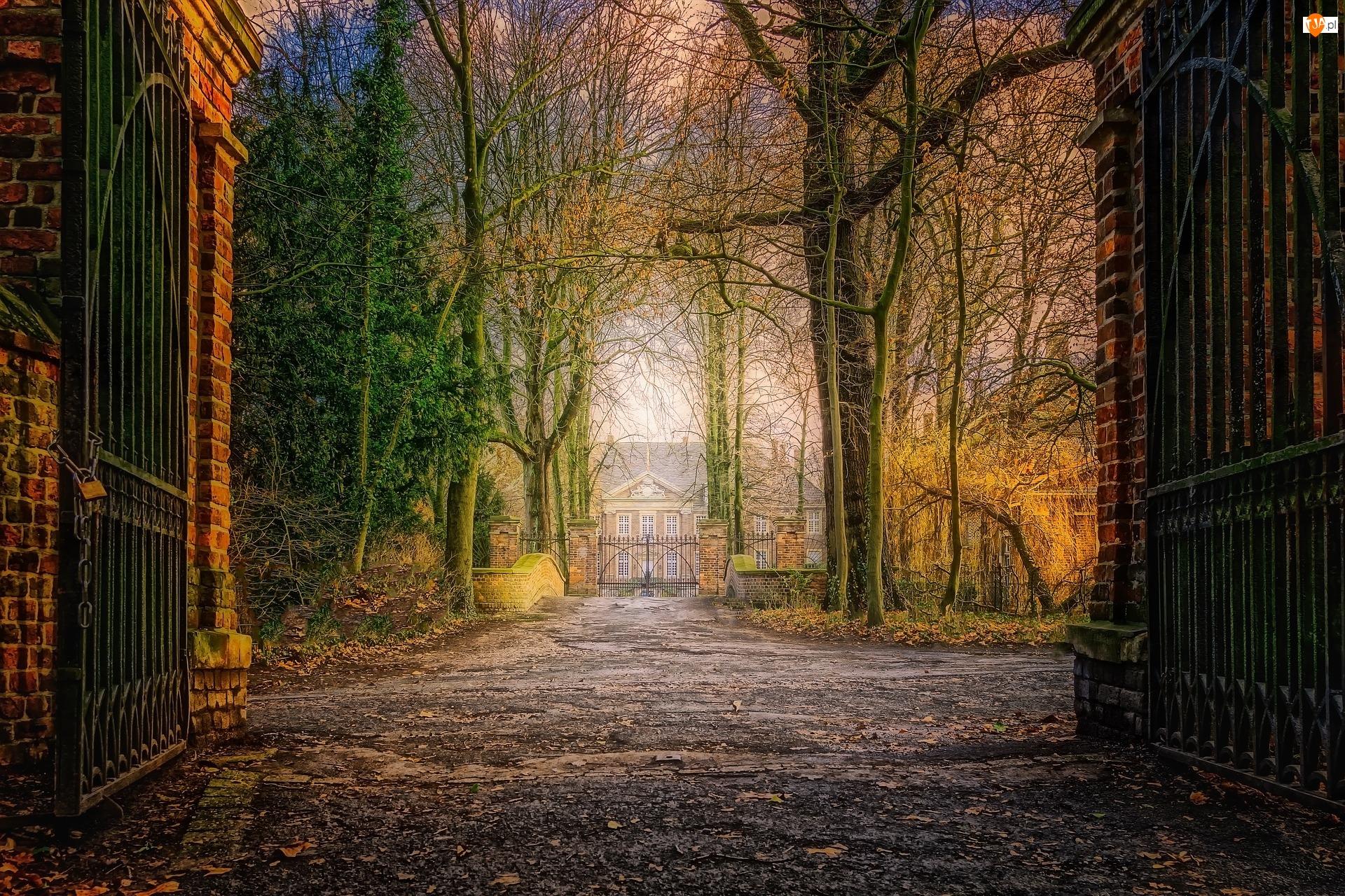 Park, Brama, Dom, Drzewa