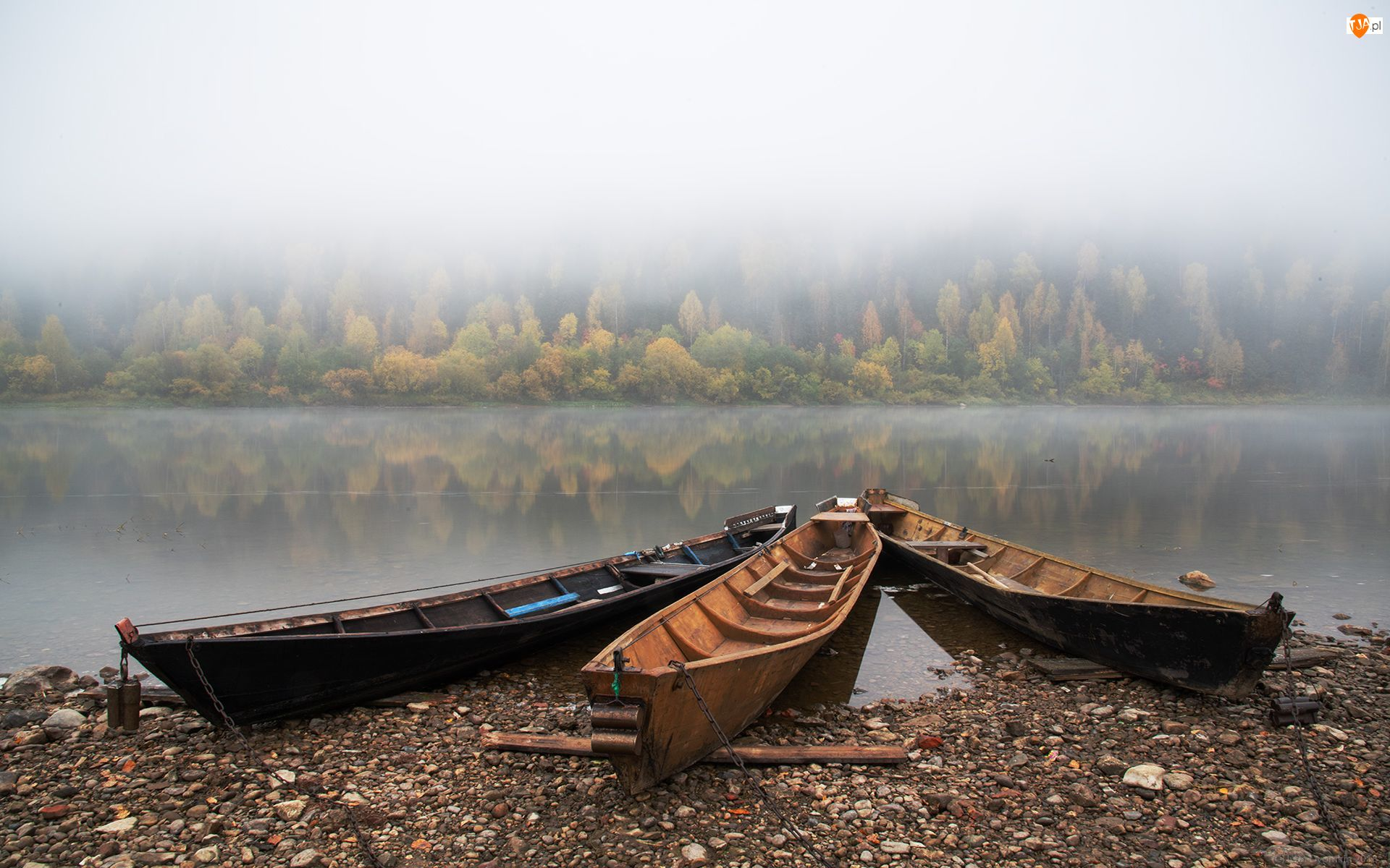 Drzewa, Brzeg, Mgła, Jezioro, Łódki