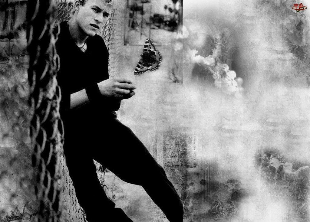 motyl, Heath Ledger, czarny strój
