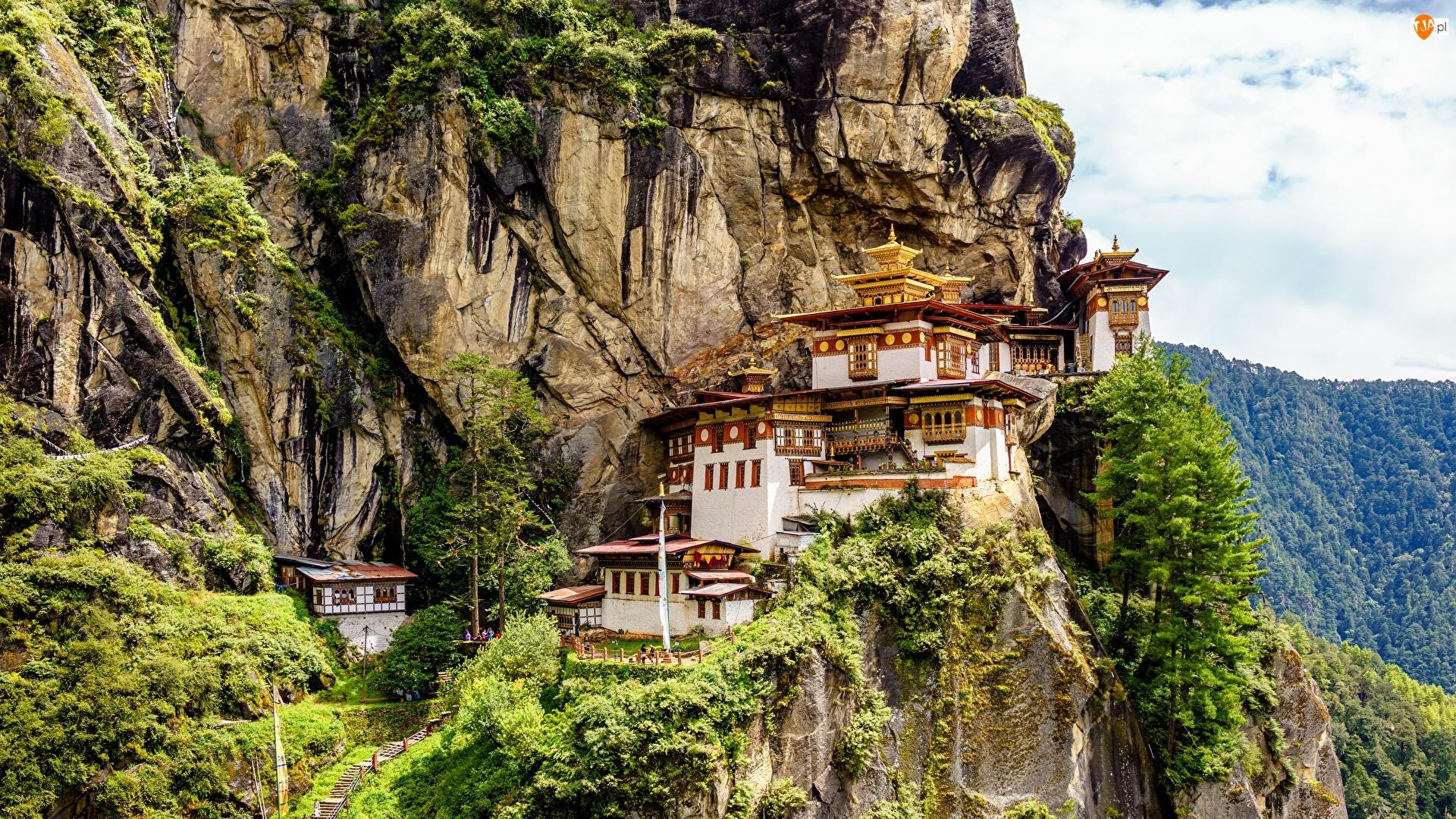 Paro Taktsang, Świątynia, Skały, Bhutan, Góry, Drzewa