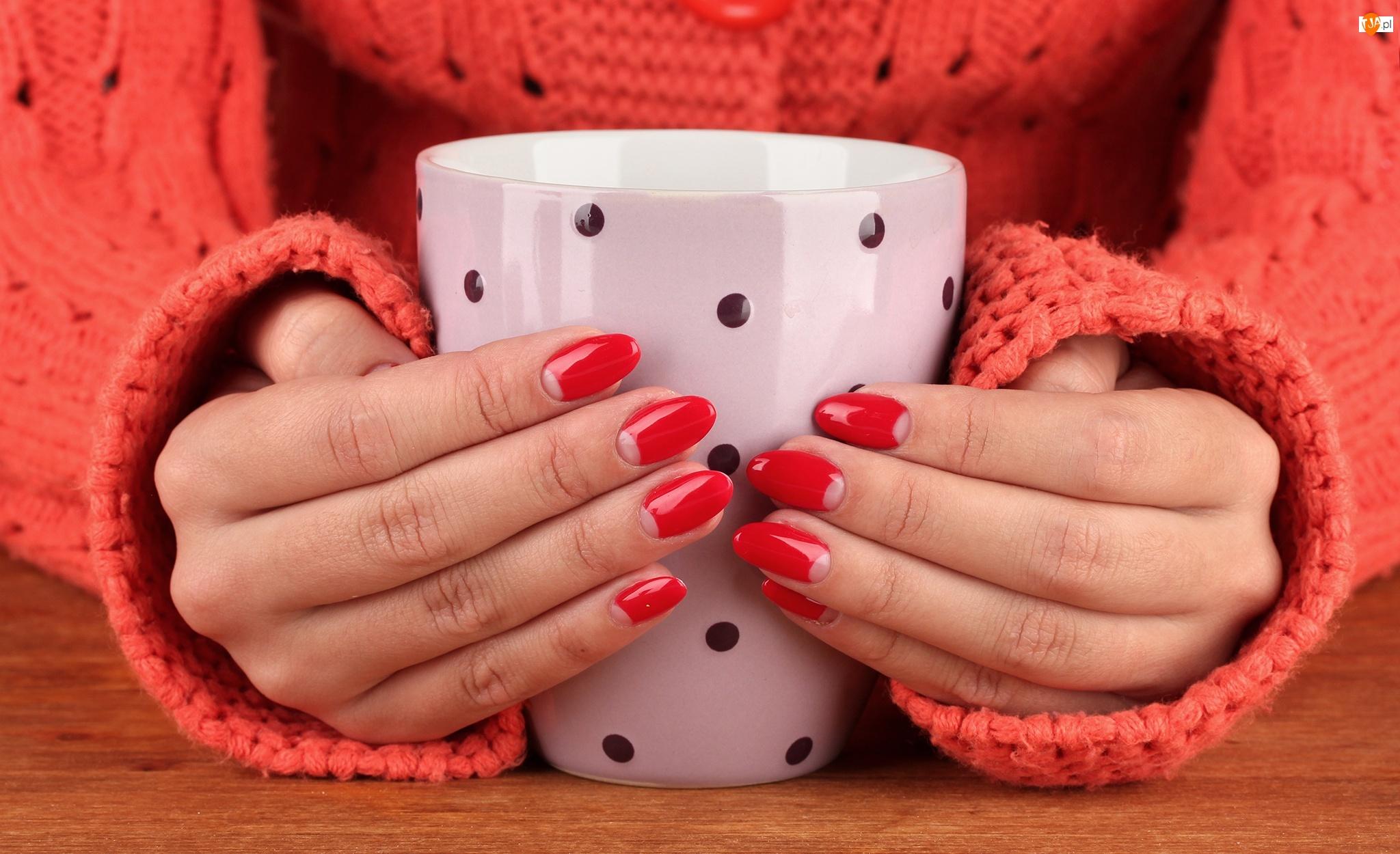 Dłonie, Manicure, Kubek, Kobieta, Sweter, Czerwone, Paznokcie