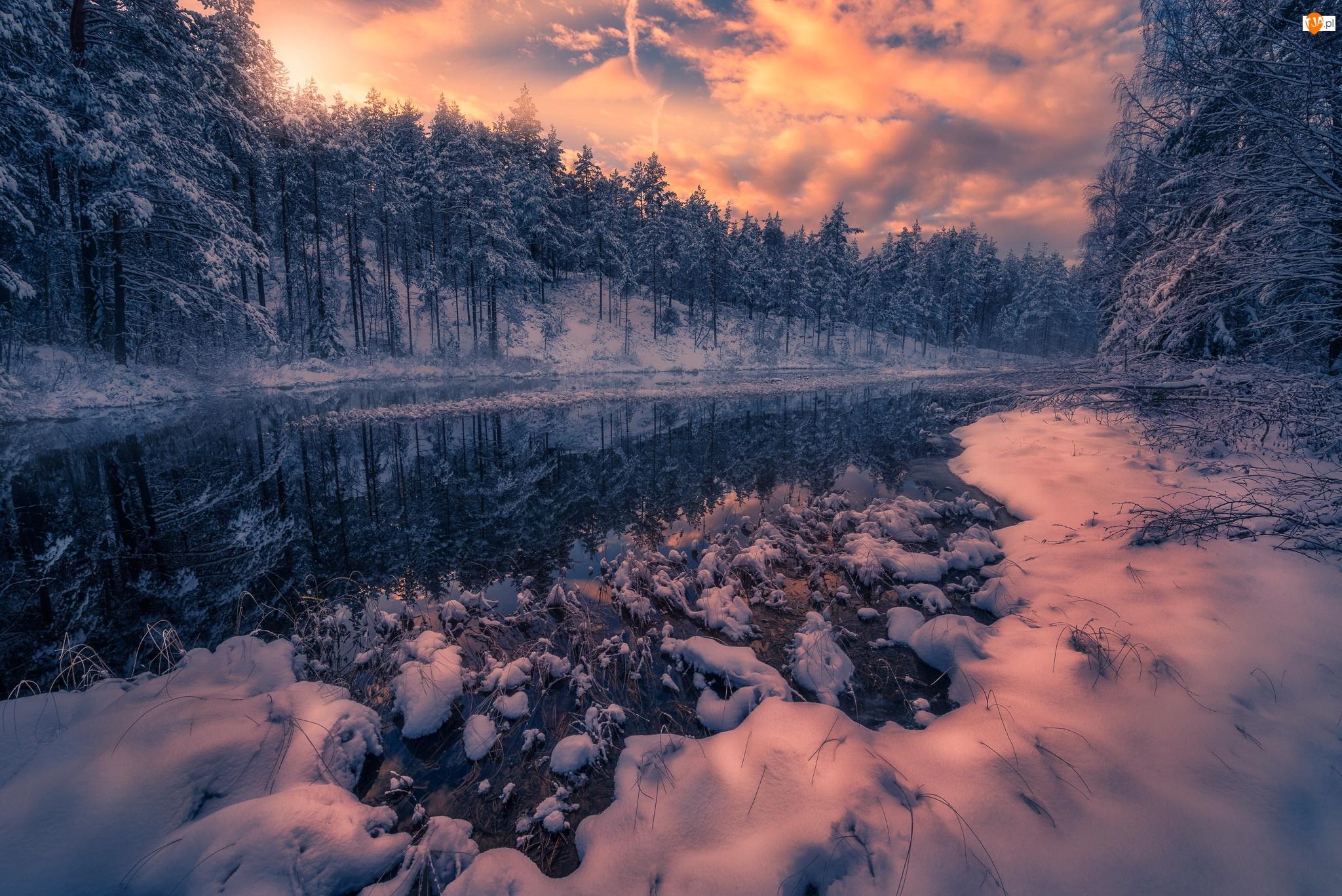 Chmury, Zima, Jezioro, Gmina Ringerike, Drzewa, Zachód słońca, Norwegia, Las