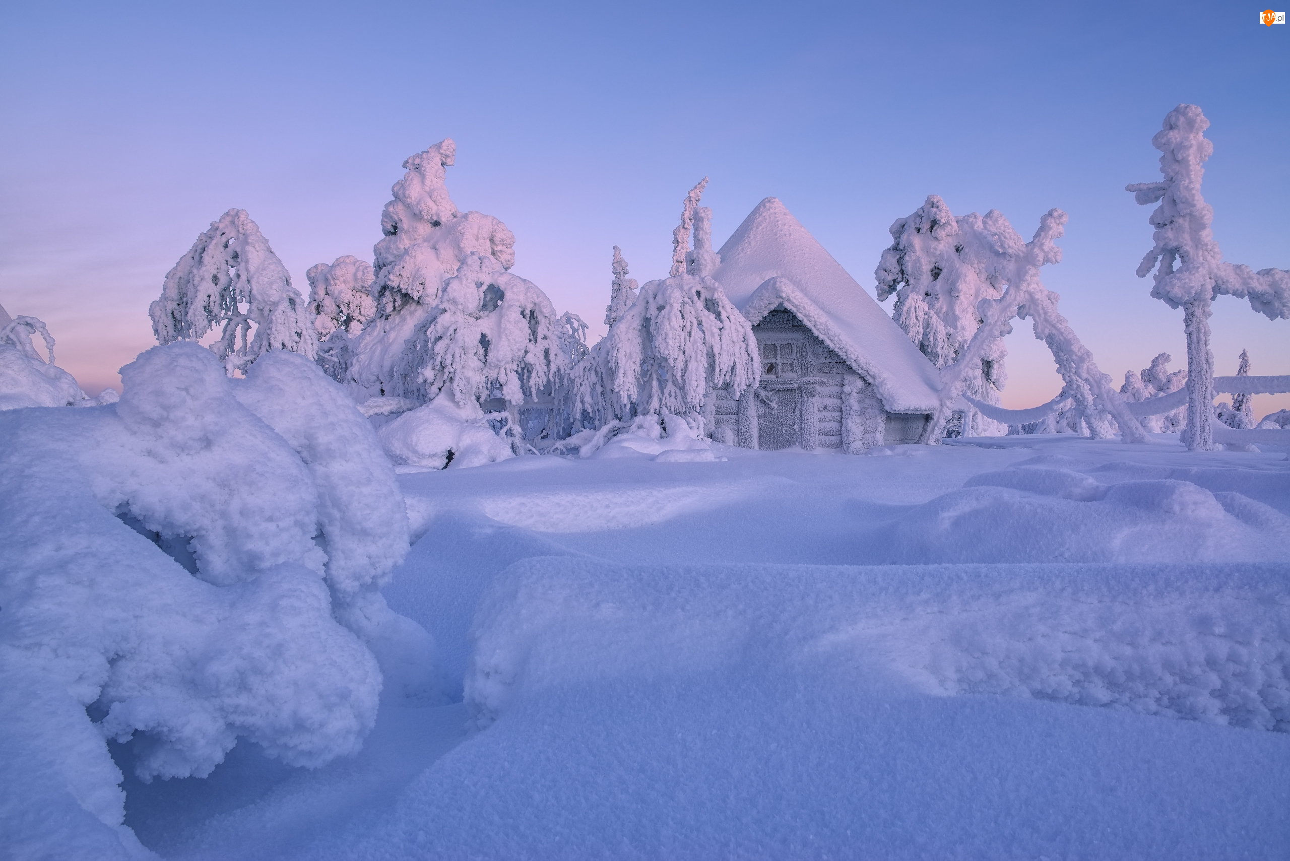 Dom, Finlandia, Drzewa, Zima, Laponia