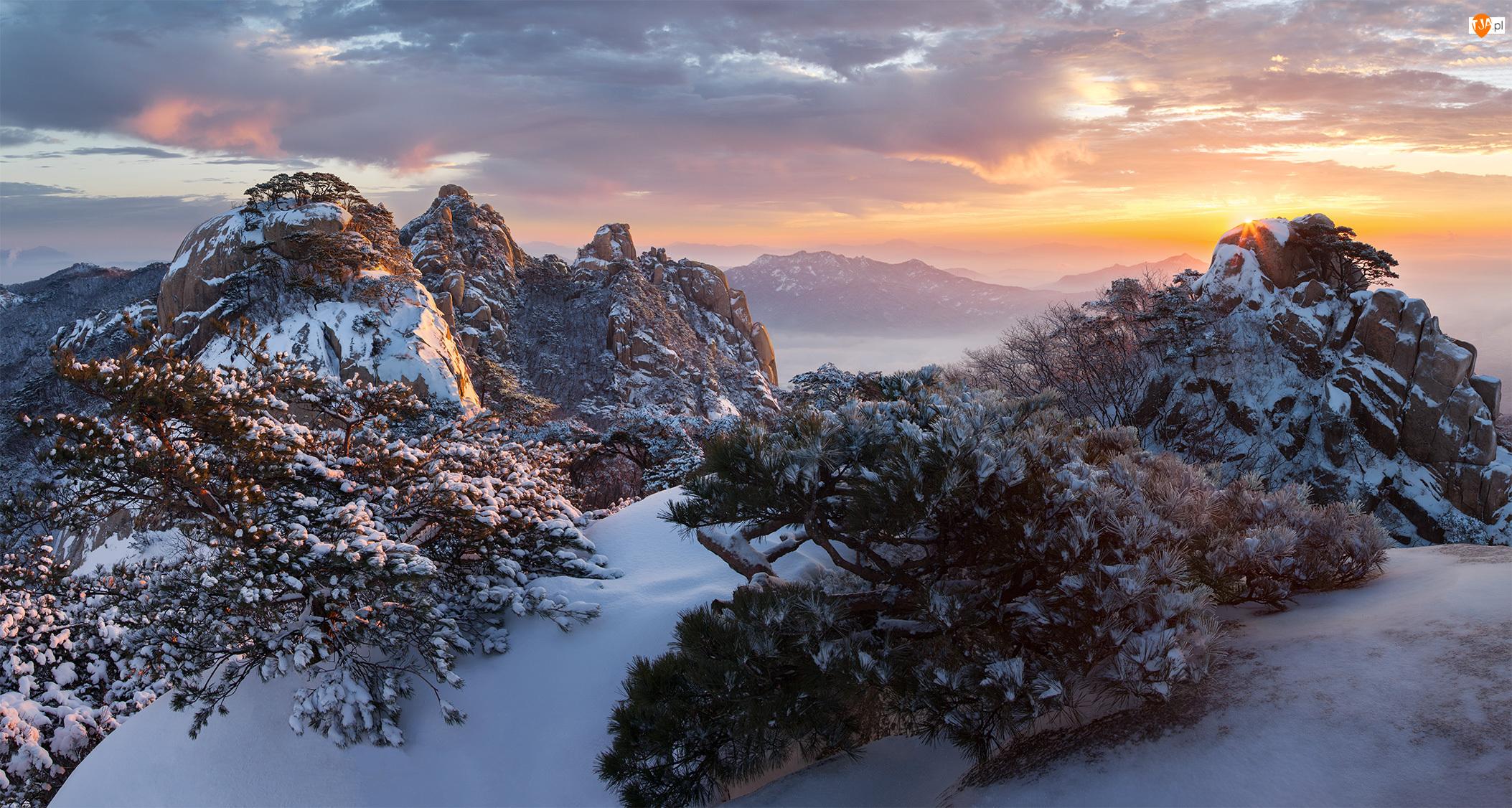 Park Narodowy Bukhansan, Drzewa, Wschód słońca, Roślinność, Góry, Chmury, Skały, Zima, Mgła, Góra Dobongsan, Korea Południowa