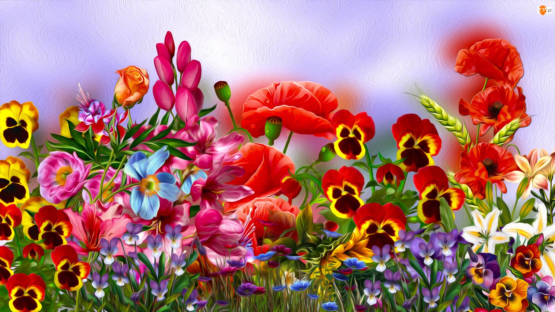 Kwiaty, Grafika, Letnie