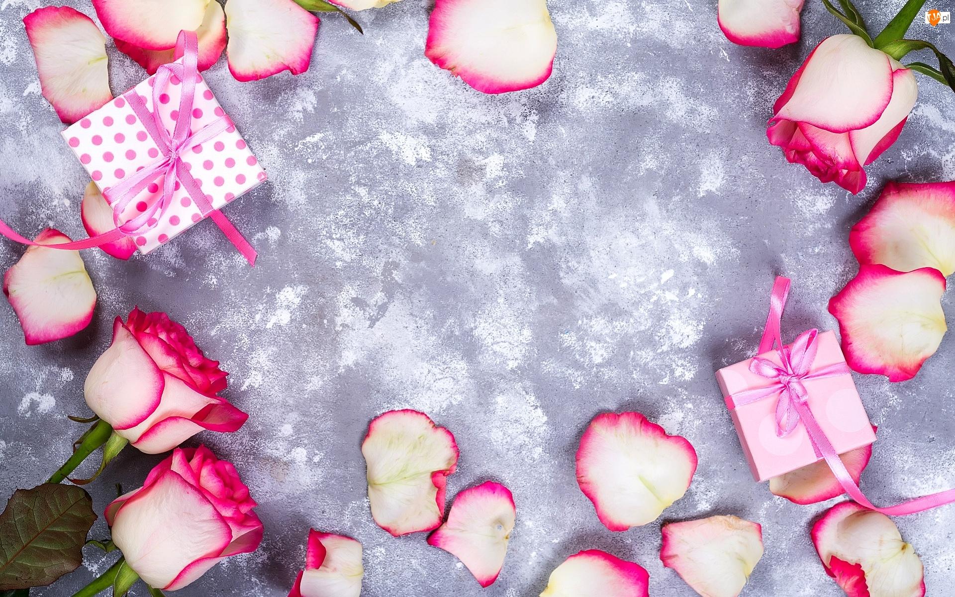 Róże, Płatki, Tło, Różowo-białe, Szare, Prezenty, Listki