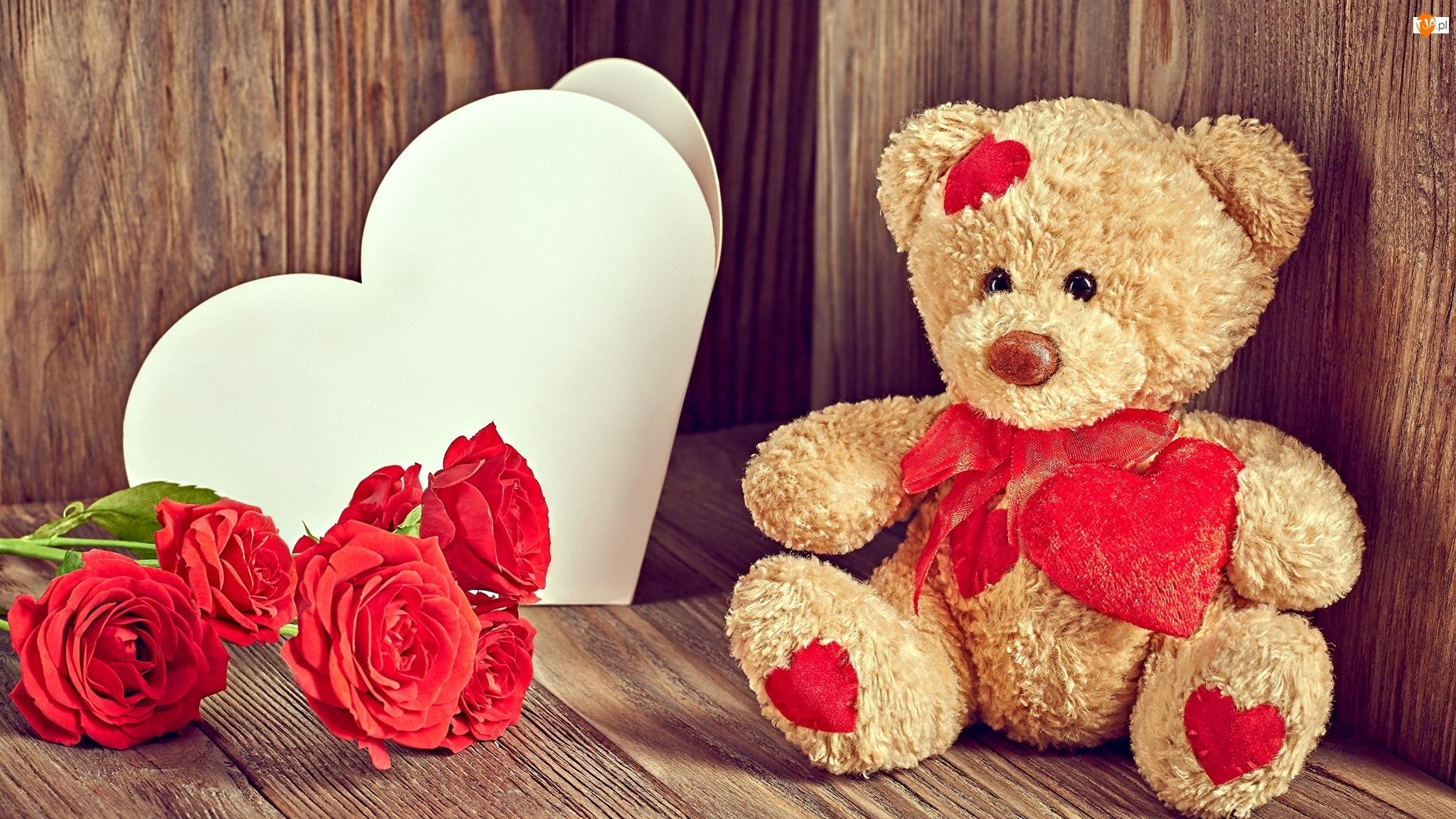 Zabawka, Walentynki, Serce, Róże, Misio, Czerwone