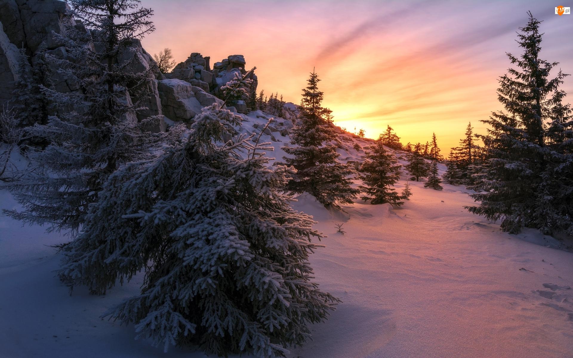 Drzewa, Skały, Rosja, Zima, Obwód czelabiński, Park Narodowy Ziuratkul, Zachód słońca
