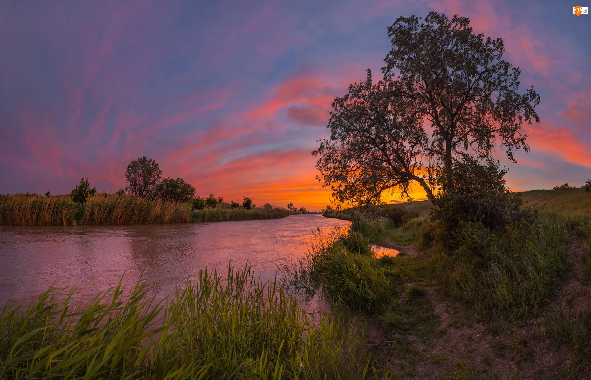 Stawropol, Rzeka, Roślinność, Kraj Stawropolski, Kanał Nevinnomyssk, Zachód słońca, Rosja, Drzewa