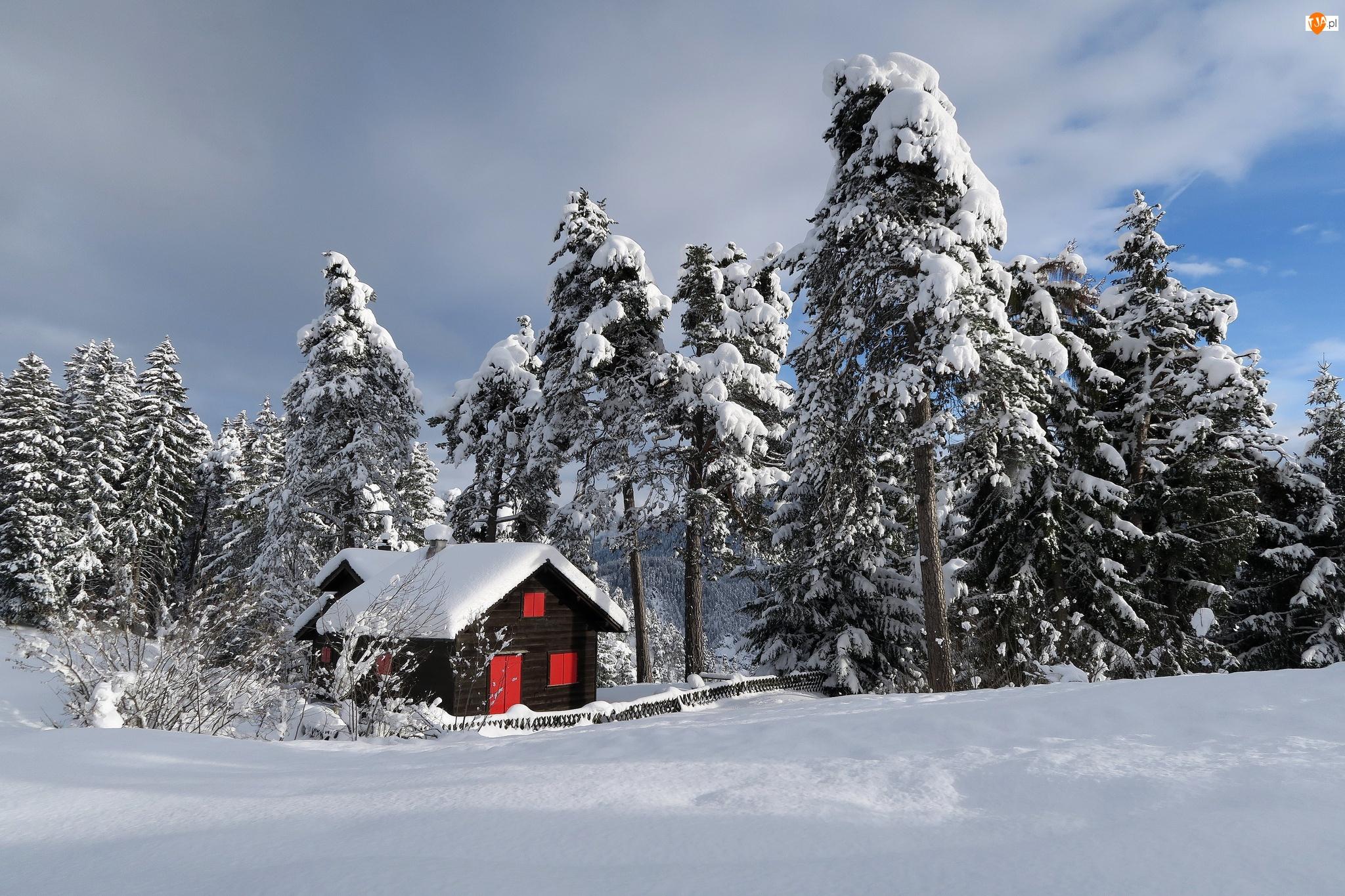 Ośnieżone, Zima, Czerwone Drzwi, Drzewa, Las, Okna, Chmury, Dom