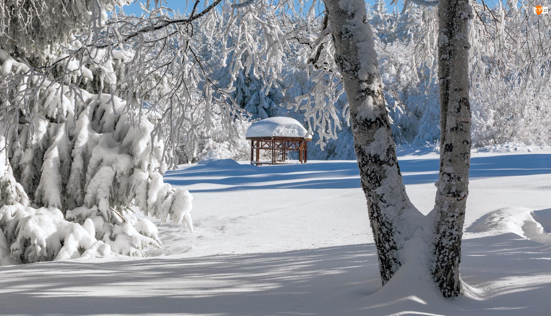 park, Altanka, Śnieg, Zima, Drzewa