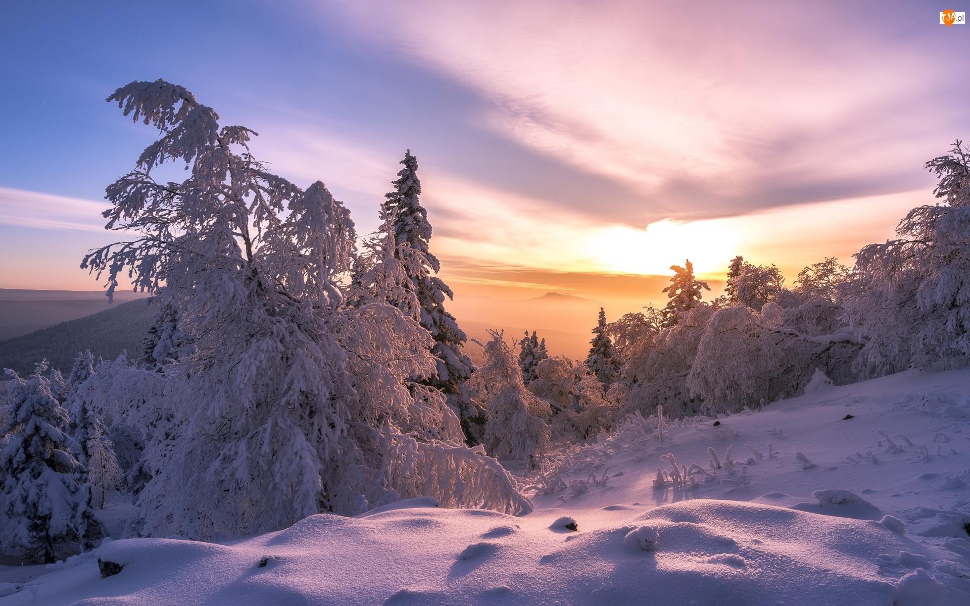 Góry, Zima, Ośnieżone, Wschód słońca, Las, Drzewa