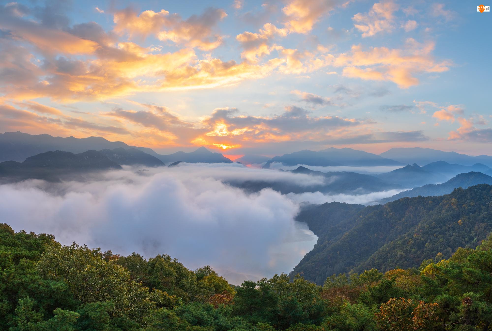Mgła, Góry, Roślinność, Chmury, Drzewa, Wschód słońca