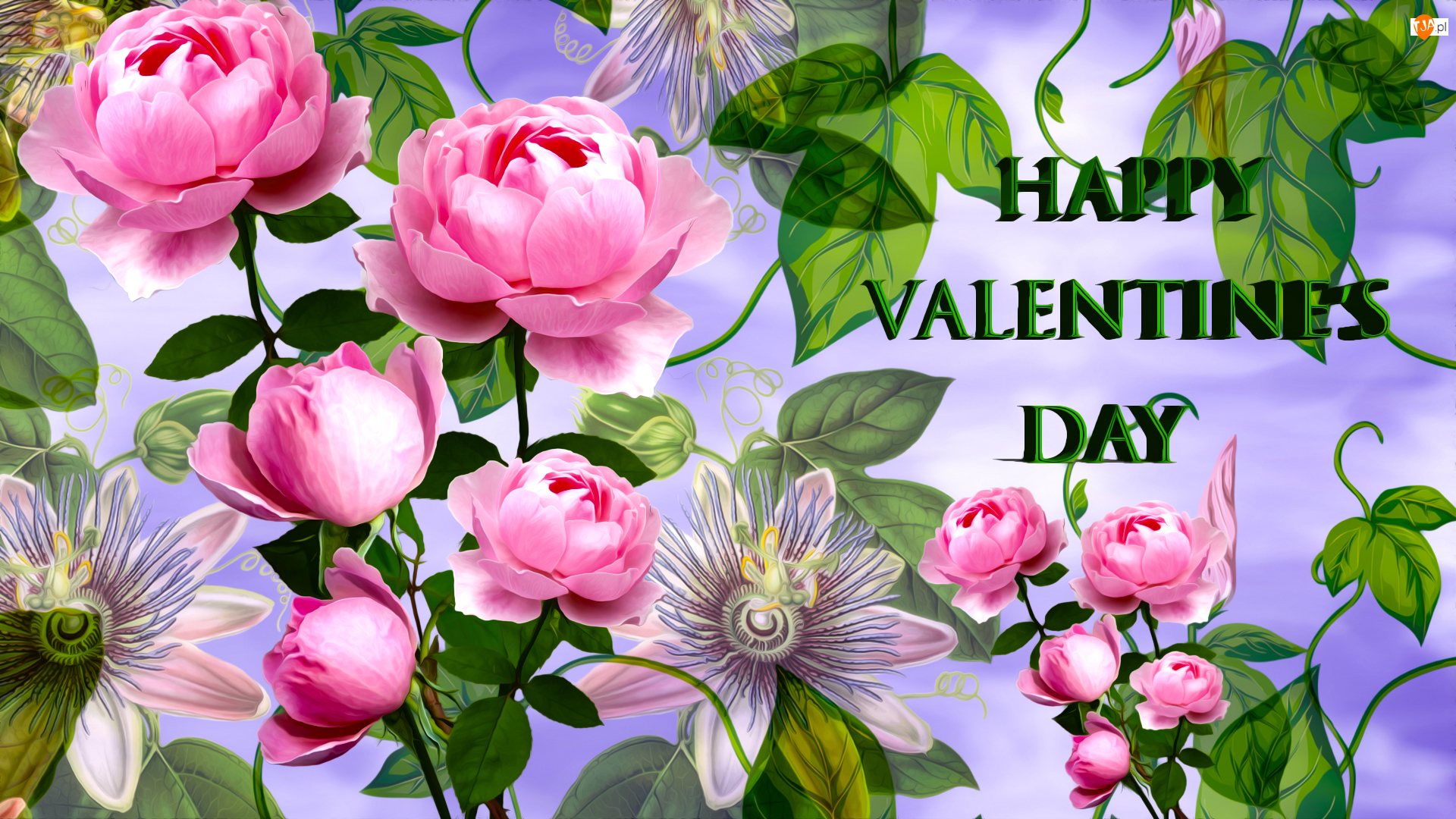 Walentynki, Kwiaty, Róże, Napis