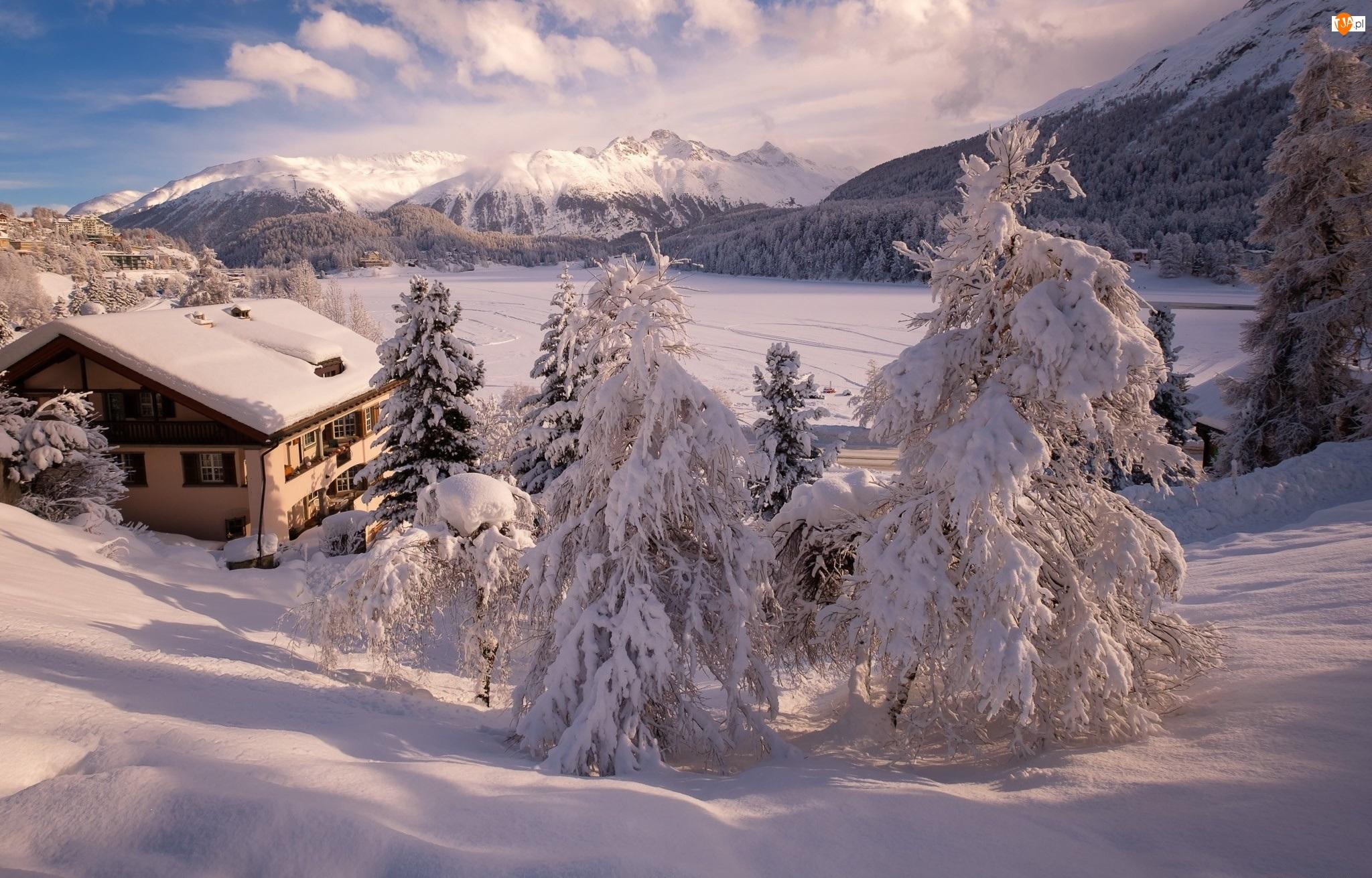 Szwajcaria, Jezioro Sankt Moritz, Sankt Moritz, Zaśnieżone, Ośnieżone, Zima, Świerki, Góry, Dom, Dolina Engadyna