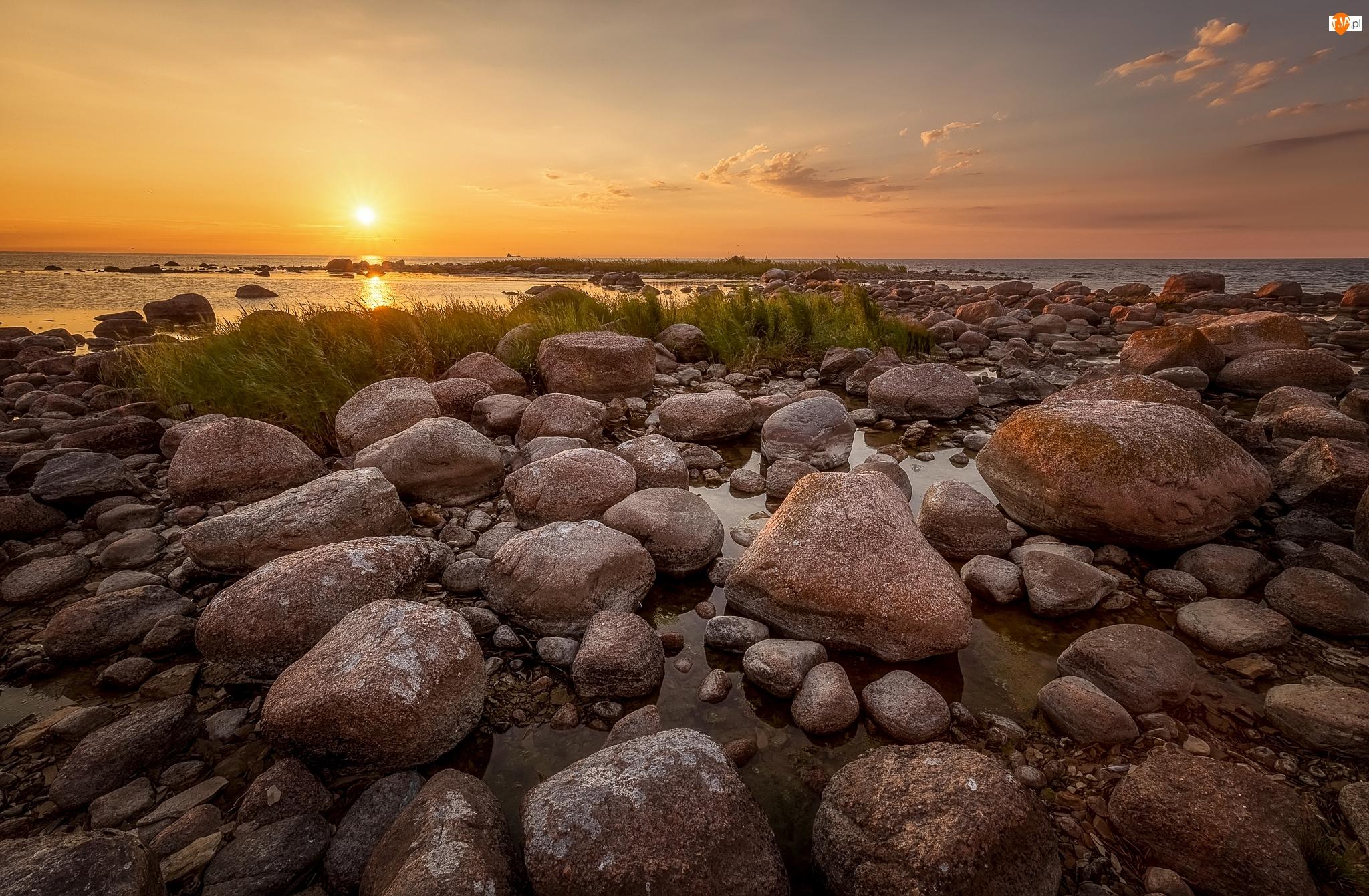 Brzeg, Rośliny, Morze, Zachód słońca, Kamienie